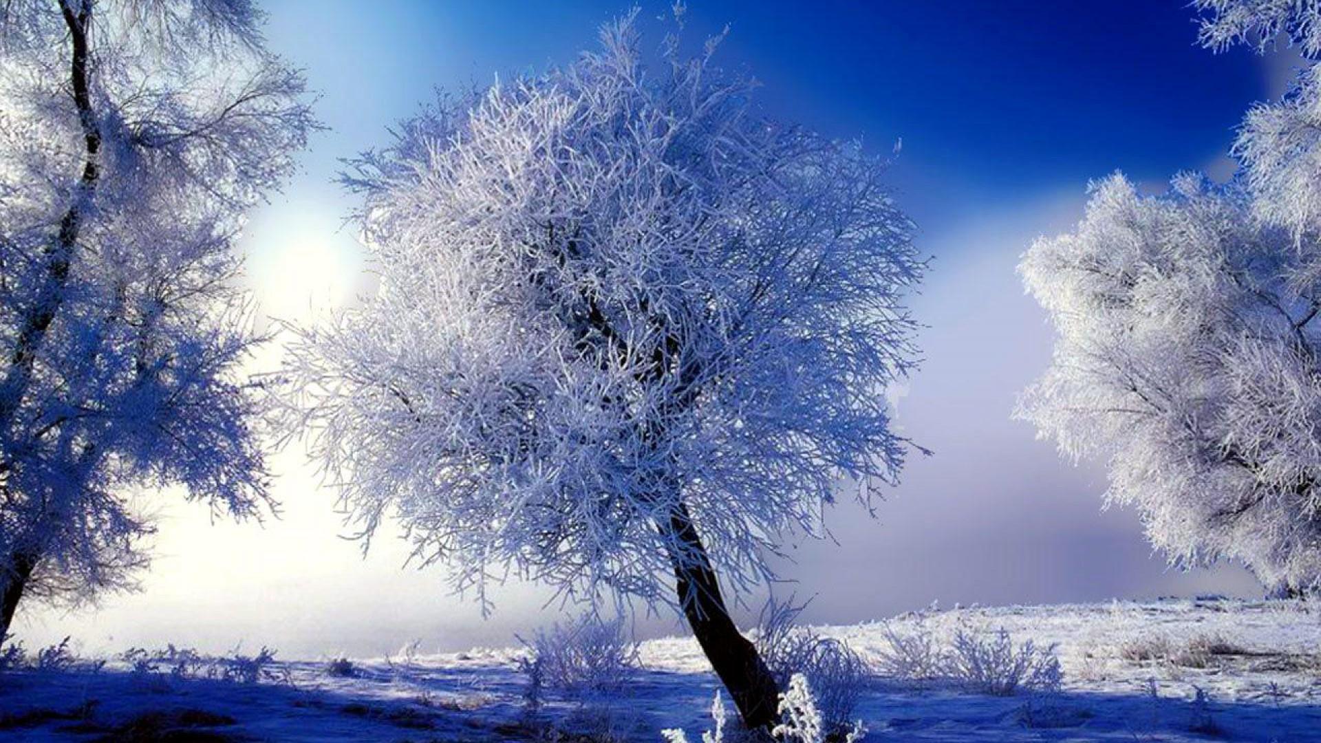 wallpaper winter scenes  58  images