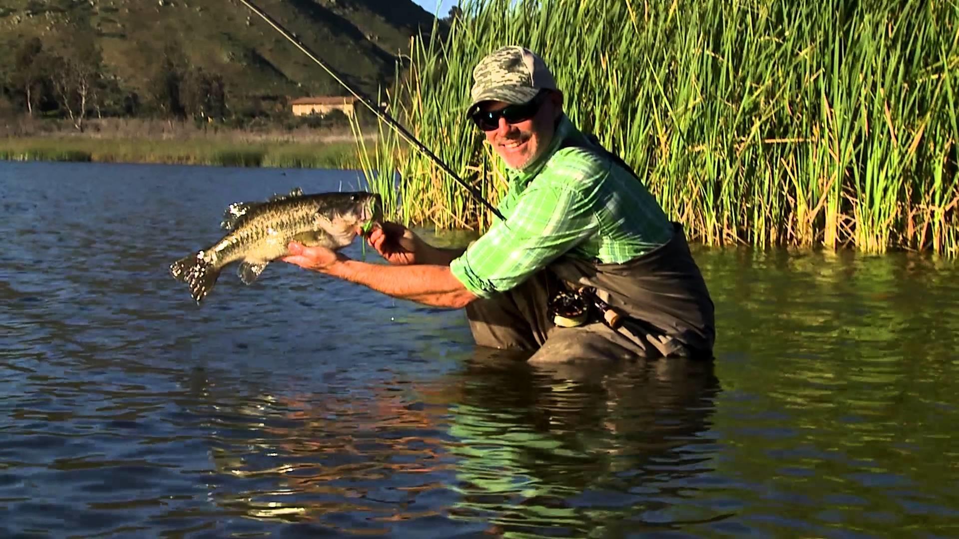 Рингтоны о рыбалке