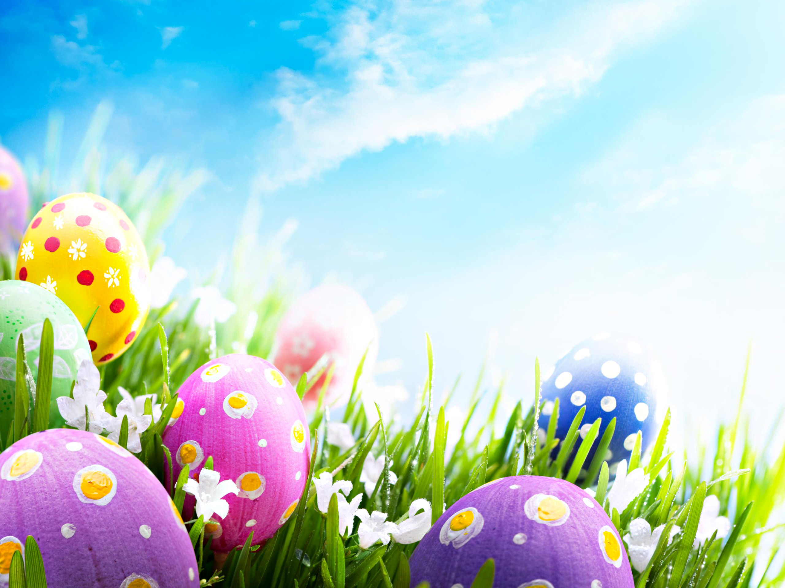 2560x1920 Easter Holiday 4HD Wallpapers