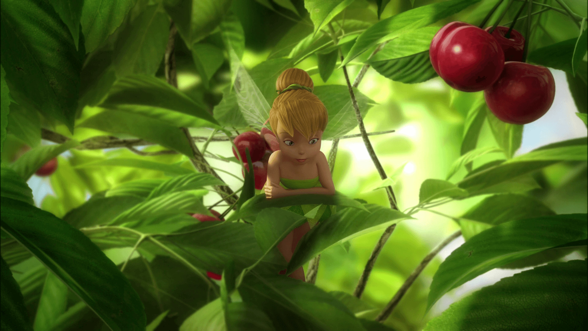 1920x1080 Tinkerbell Wallpapers HD | HD Wallpapers, Backgrounds, Images, Art ..