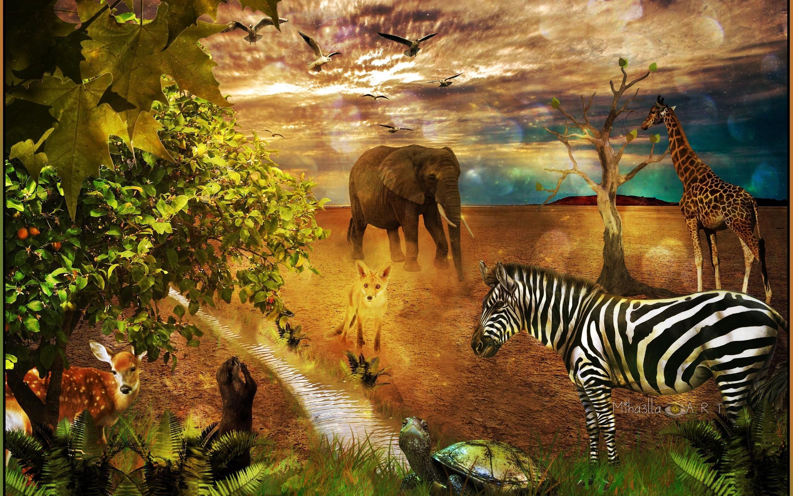 elephant art wallpaper  68  images