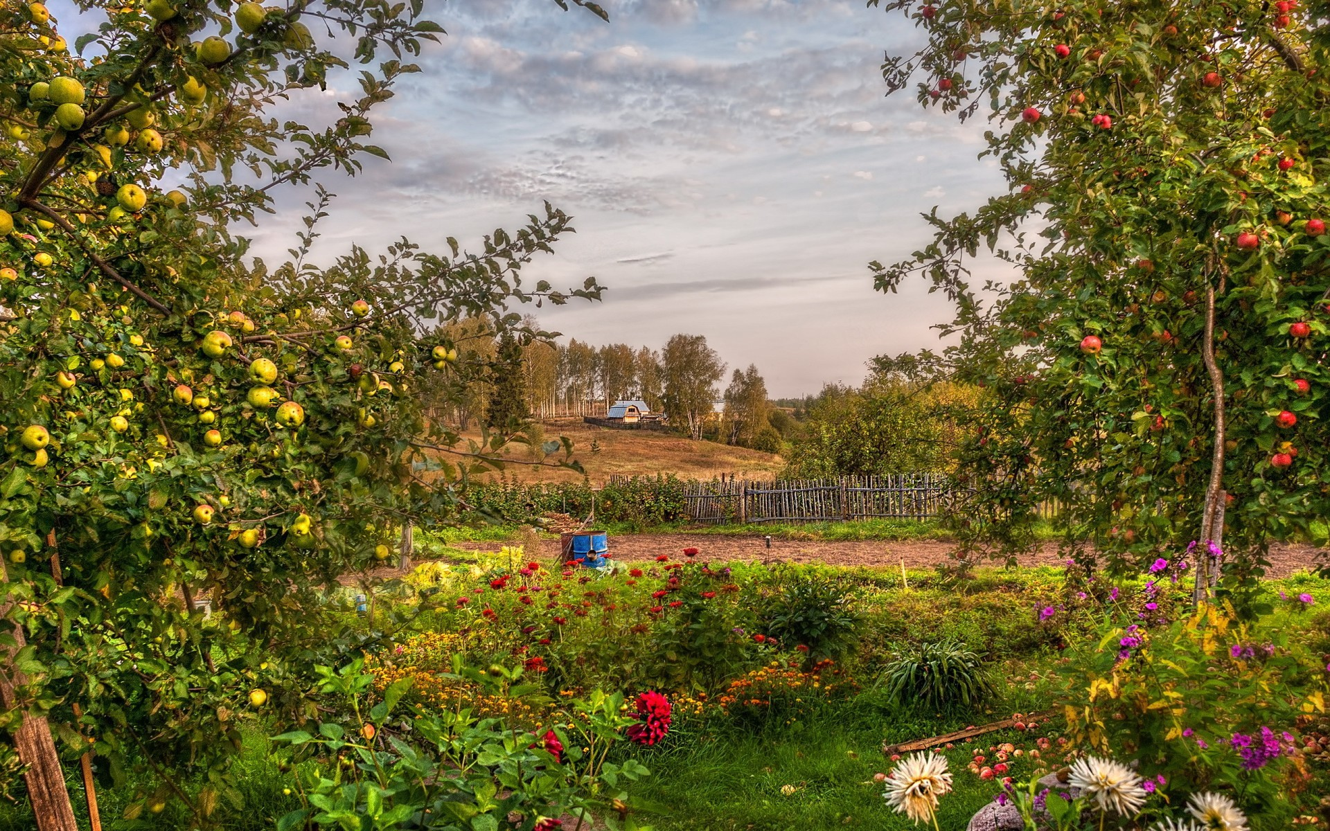 1920x1200 Garden summer landscape apples orchard hdr flowers wallpaper |  |  48182 | WallpaperUP