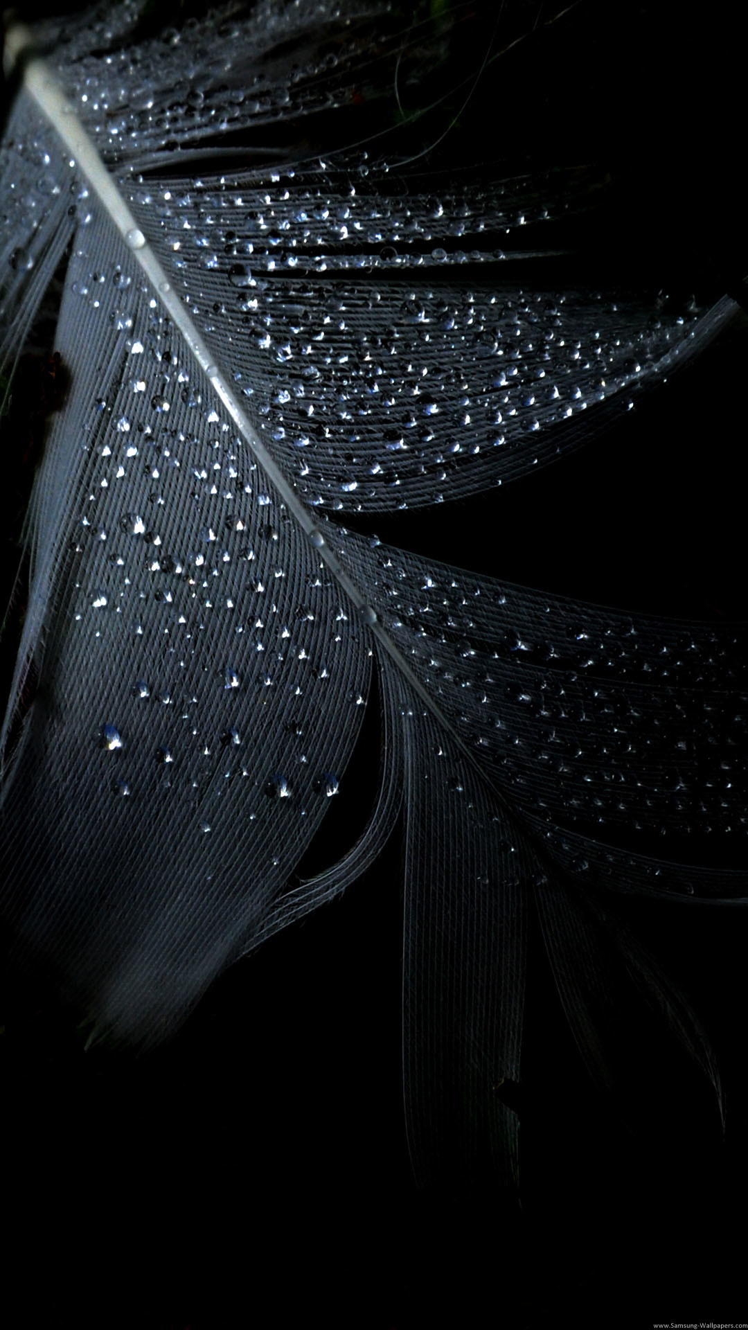 pure black wallpaper (66+ images)