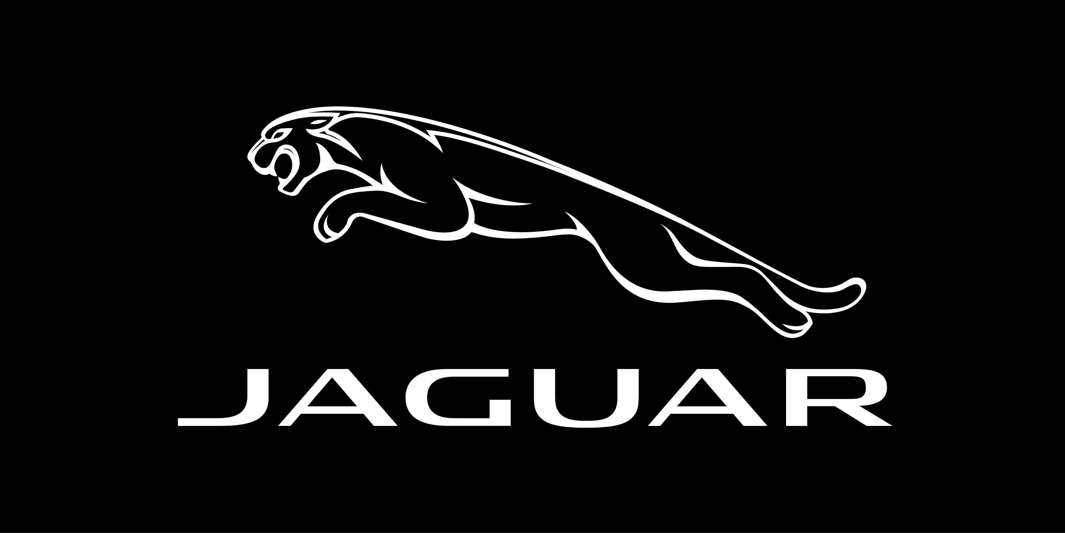 Jaguar Logos Wallpaper Clipart Vector Design