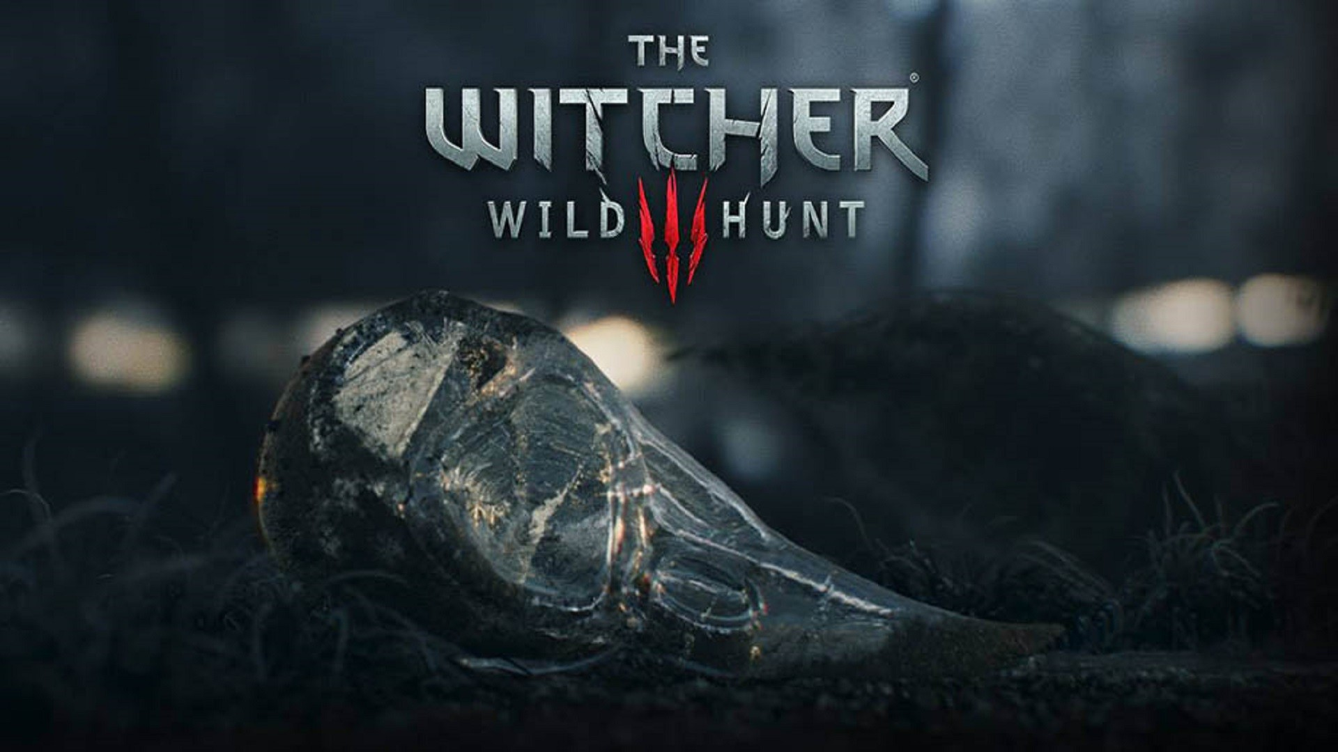 1920x1080 nice-top-games-witcher-wild-hunt-hd-free-