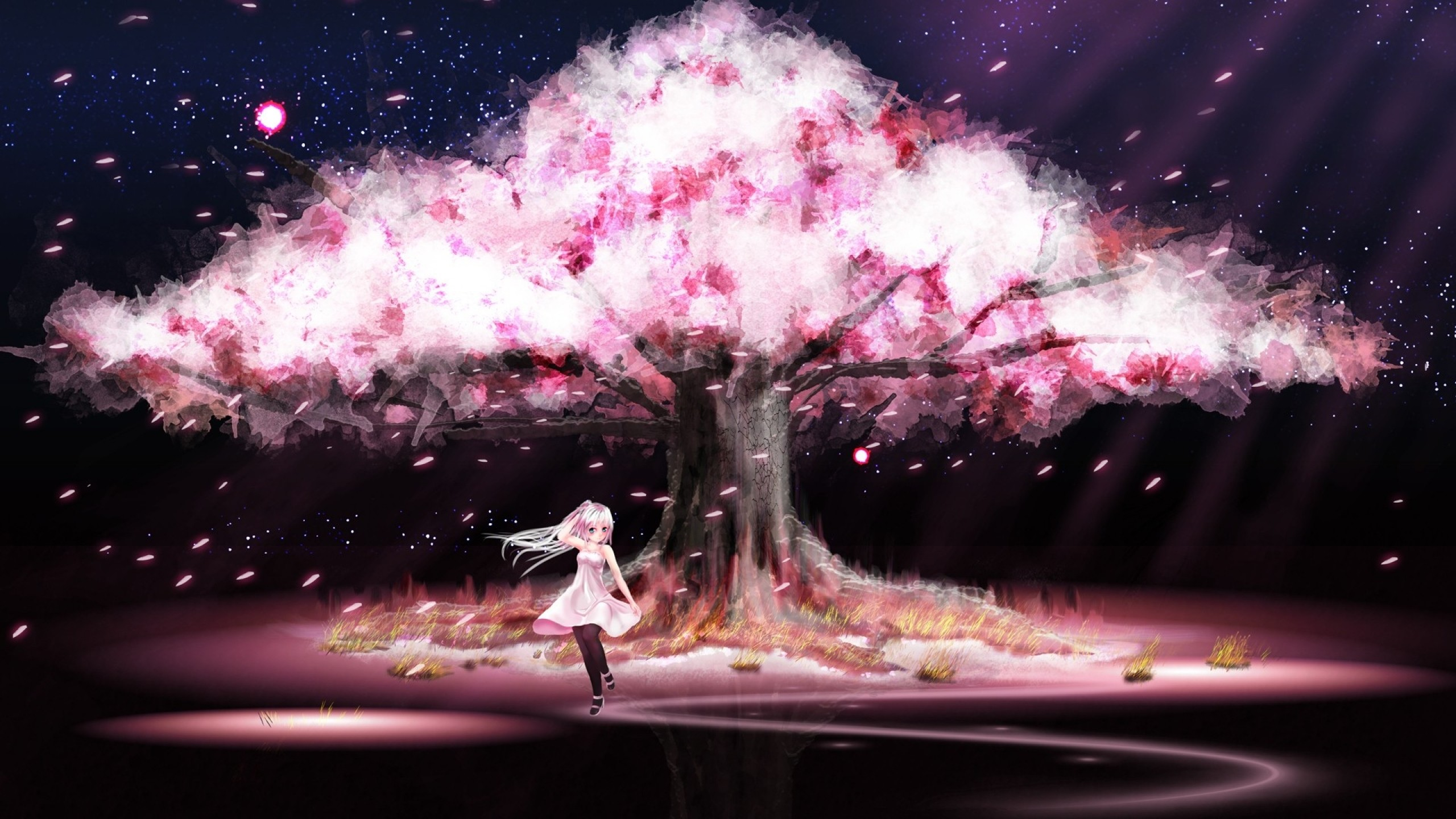 2560x1440 wallpaper.wiki-Anime-Cherry-Blossom-Wallpaper-PIC-WPC004901