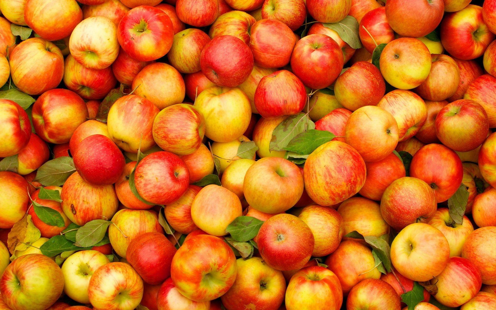 Fruit Slice 4k Hd Desktop Wallpaper