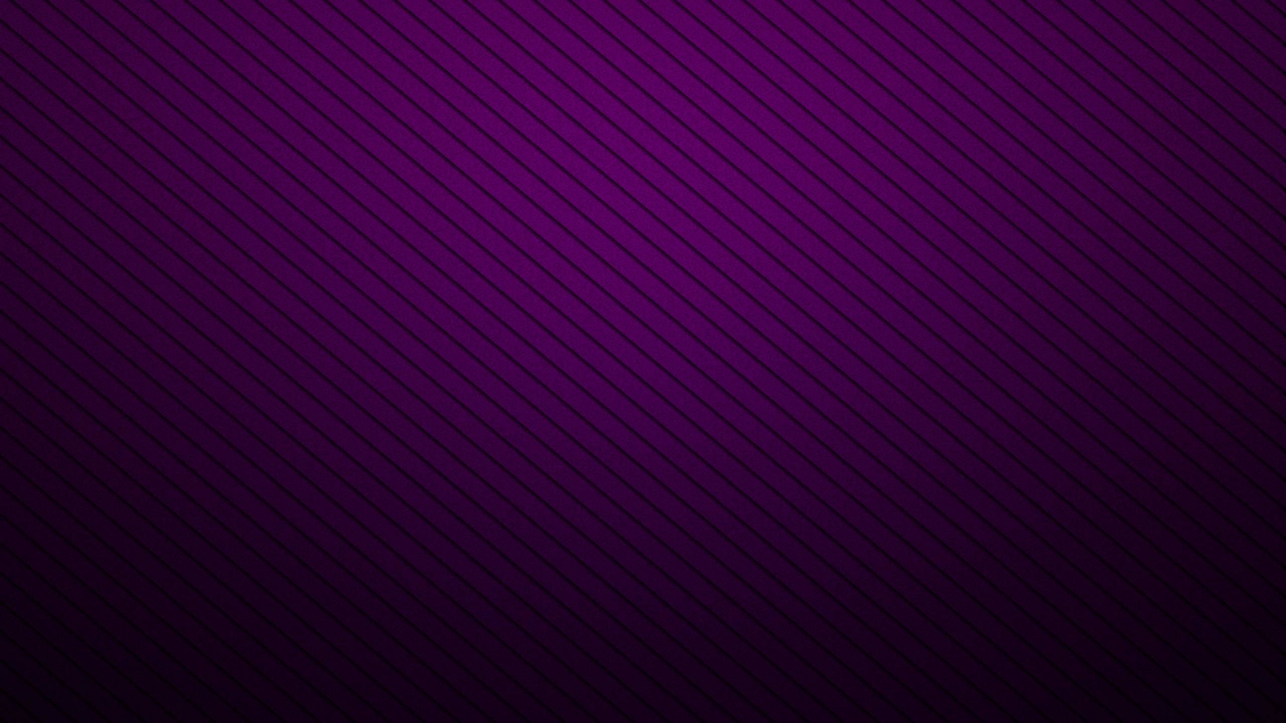 2560x1440 Black Silver And Purple Wallpaper