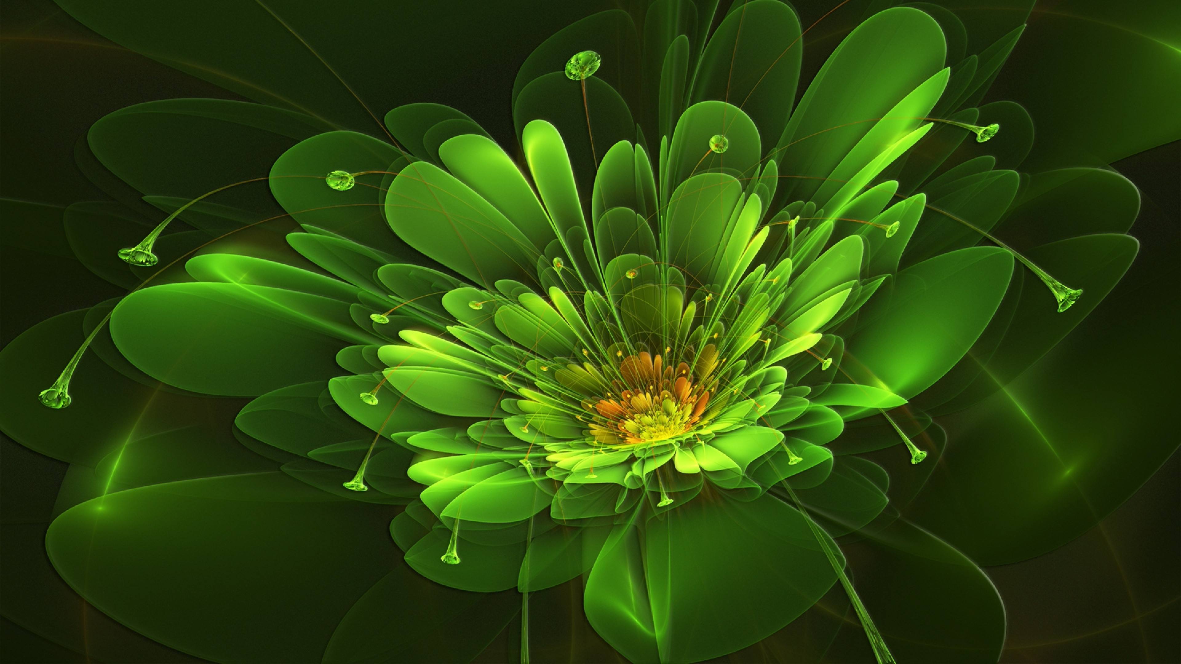 3840x2160  Wallpaper green, flower, background, colorful, light