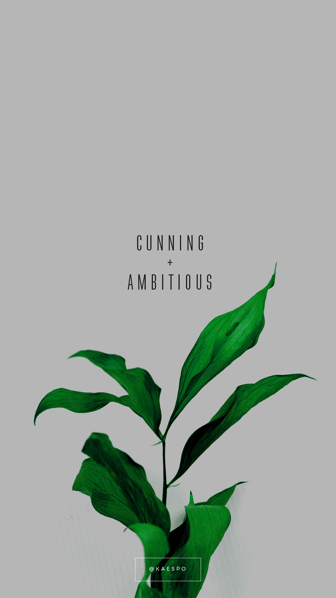 1080x1920 Cunning And Ambitious Slytherin Quote on Green Floral Background by kaespo