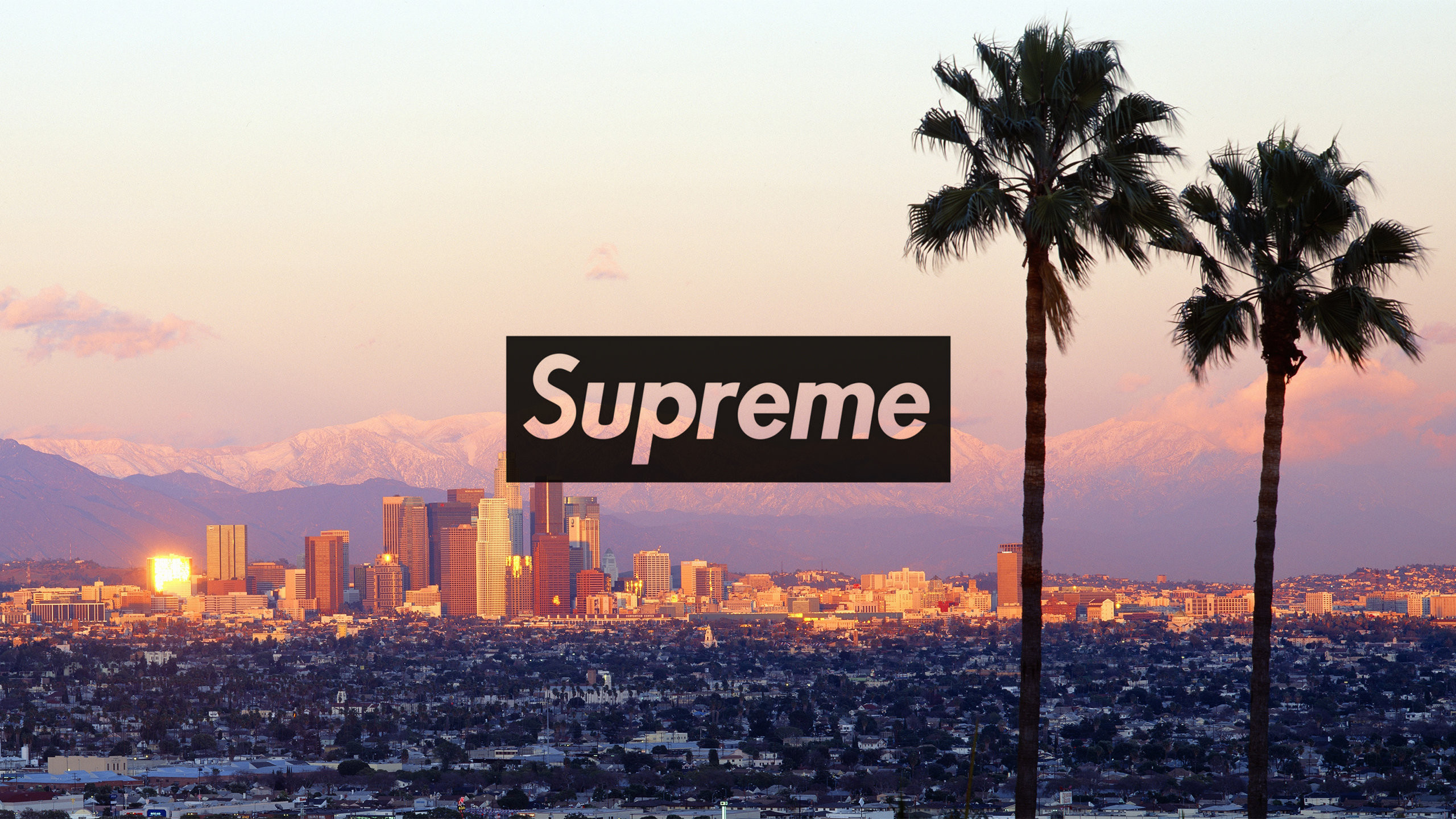 Supreme Wallpaper (73+ images)