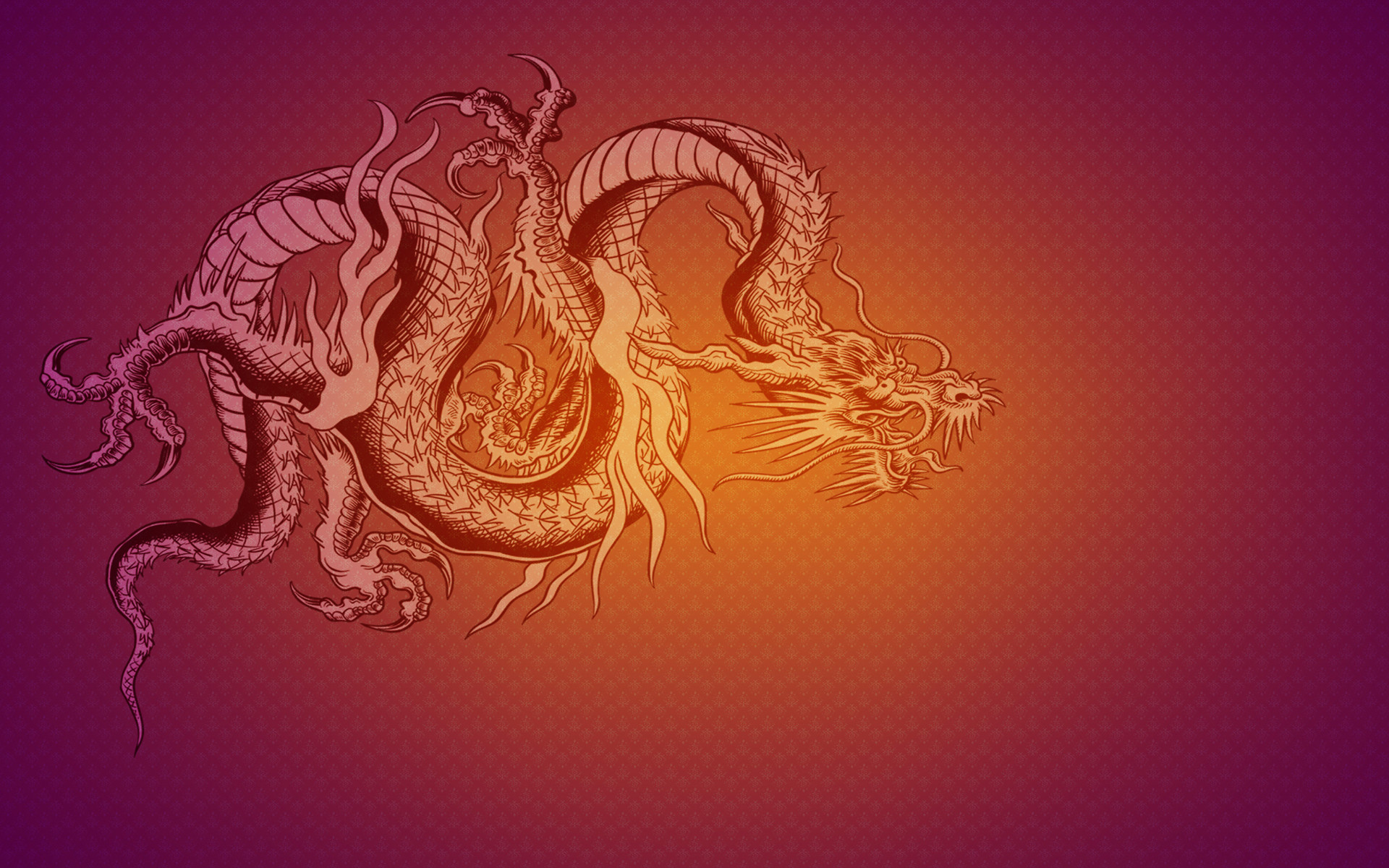1920x1200 The dragon flag