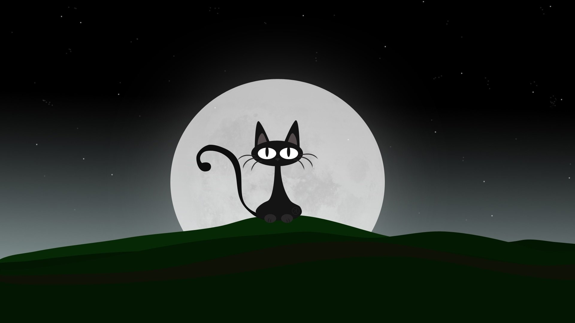 Anime Cat Wallpaper 63 Images