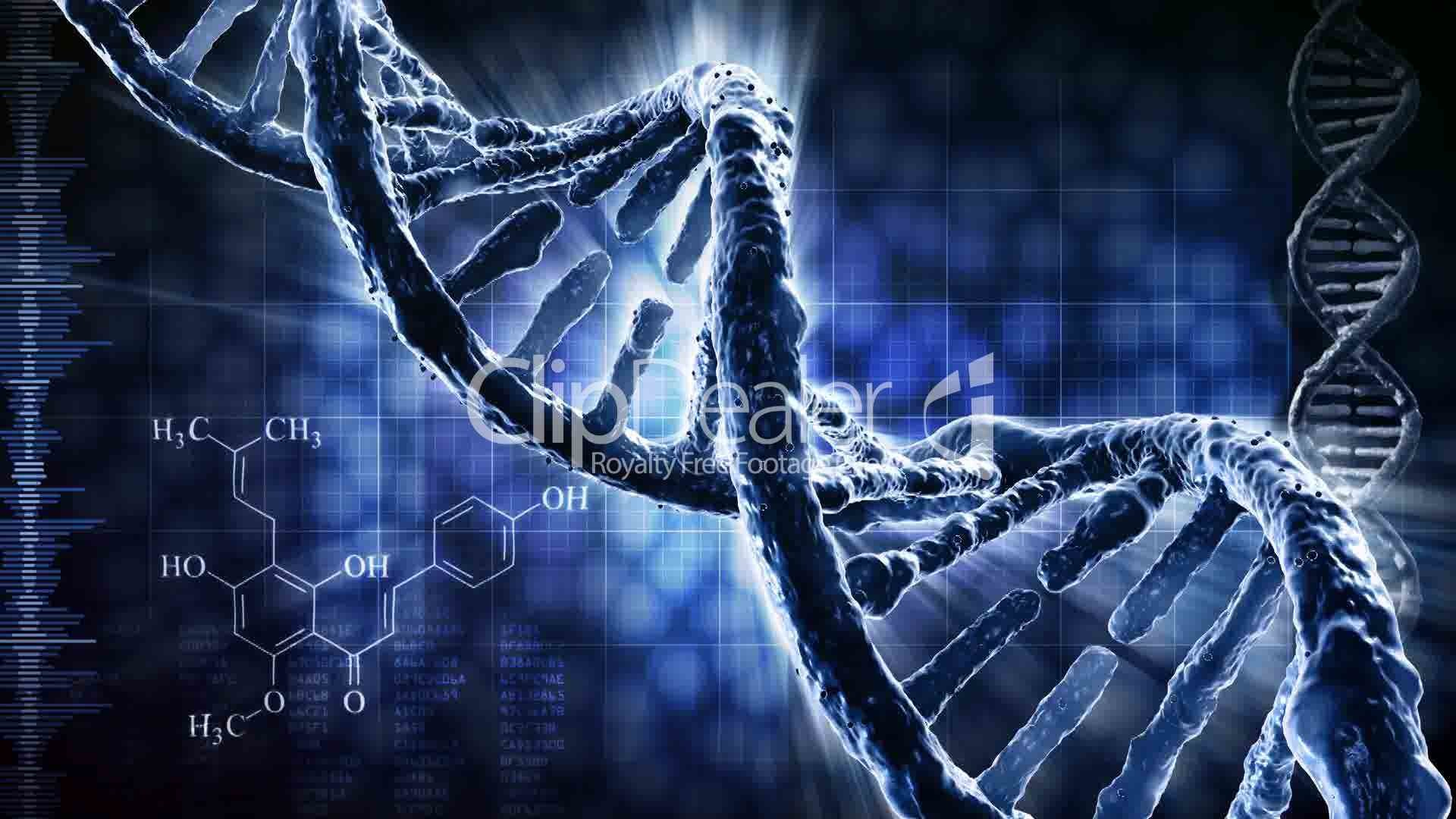 a comparison of dna theories and experiments in the science of biology Theories and doctrines of ernst  (biology) the field of science concerned with  conception, copulation, cytoplasm, diffusion, digestion, diploid, division, dna.