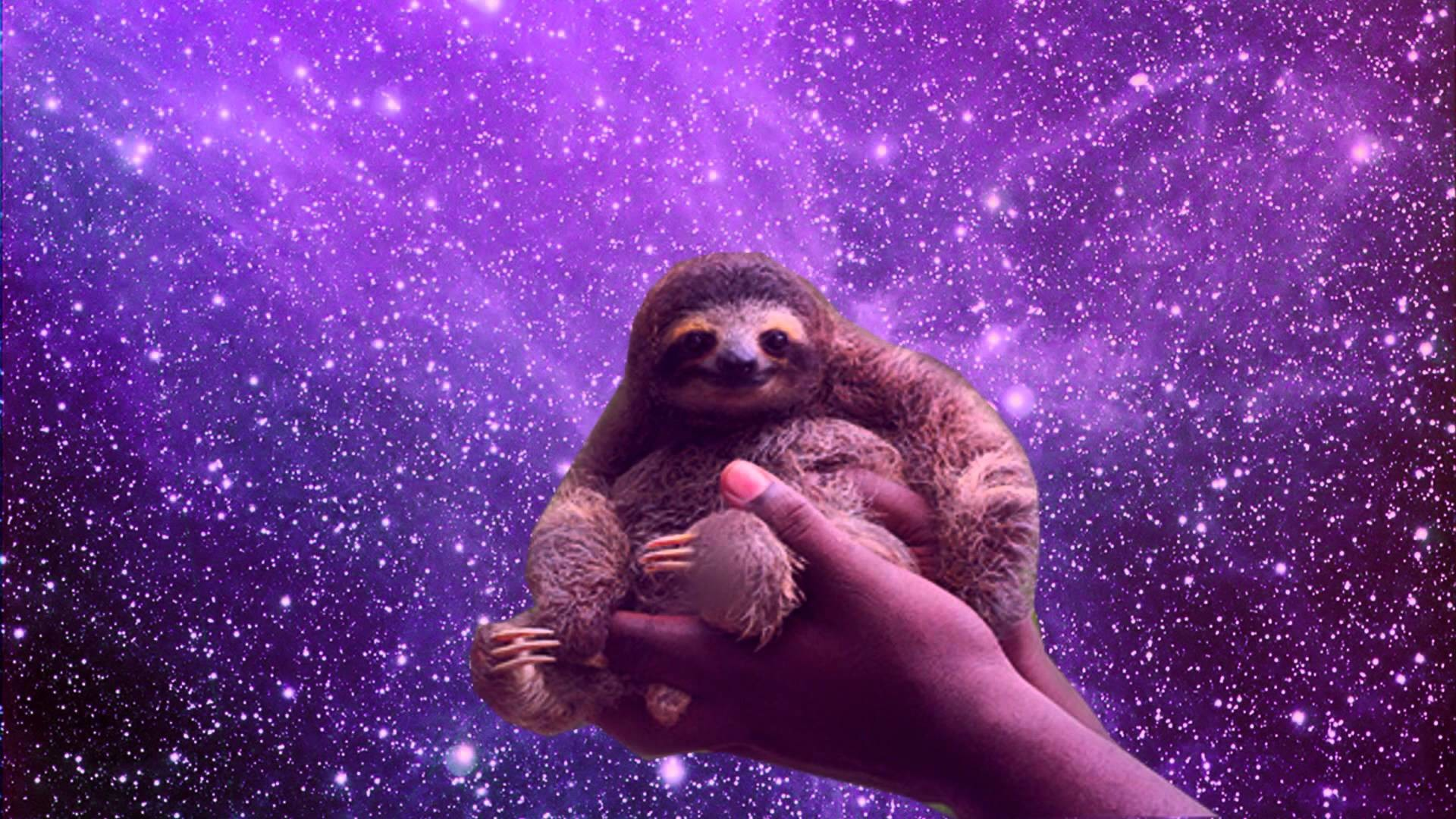 1920x1080 Sloths in Space