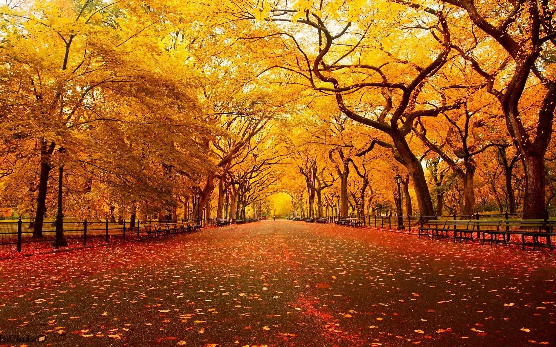 Christian Autumn Wallpaper (36+ Images