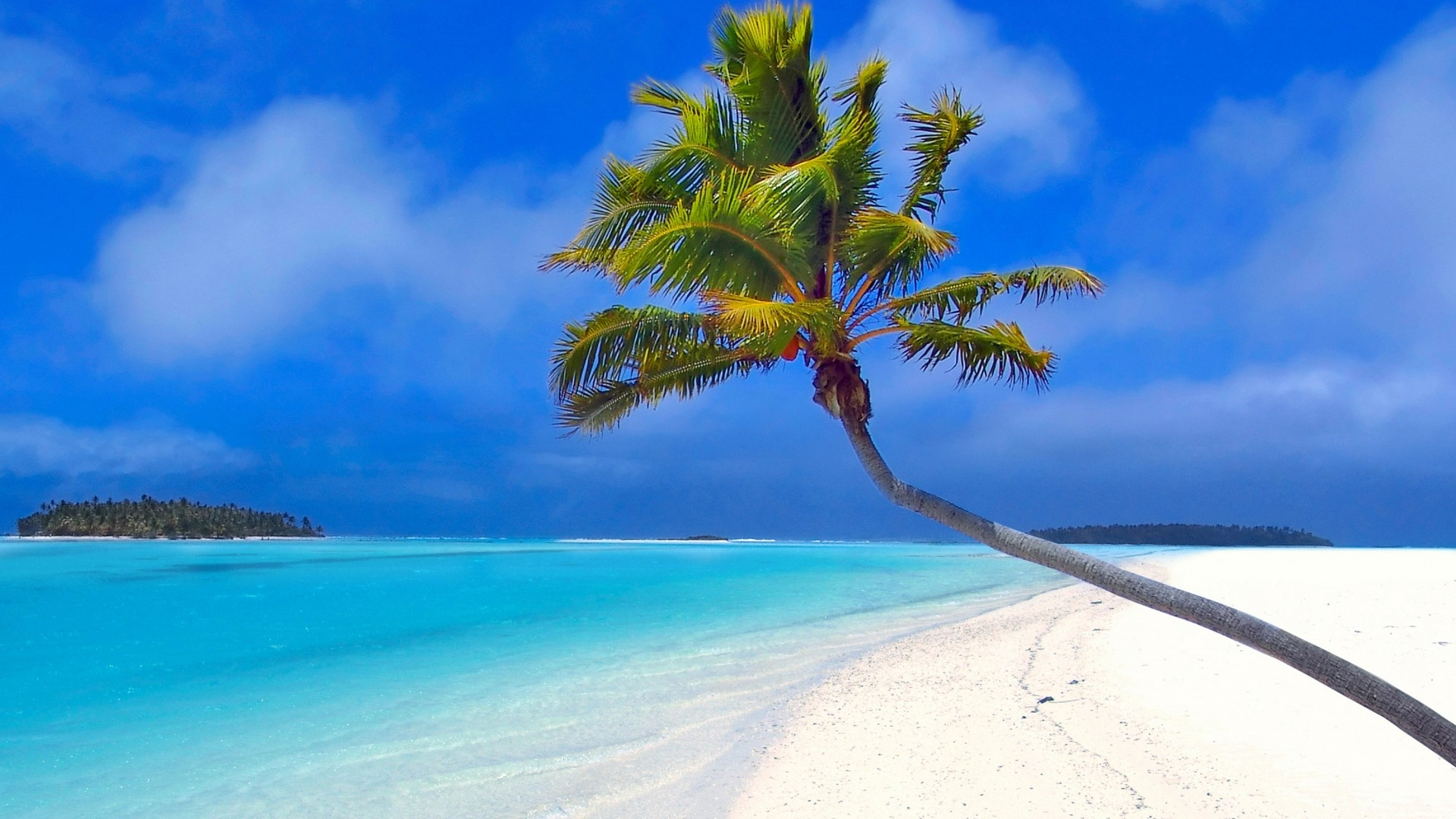 1920x1080 Preview wallpaper maldives, beach, palm trees, sand, sea