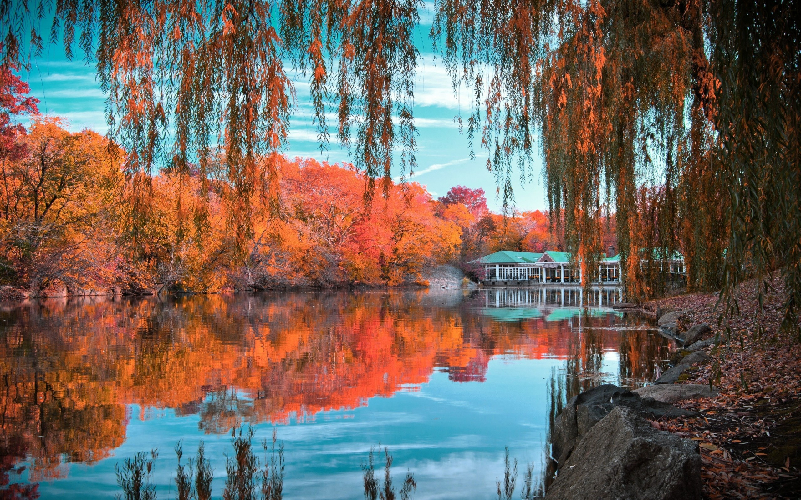2560x1600 Preview wallpaper central park, new york, autumn, beautiful landscape