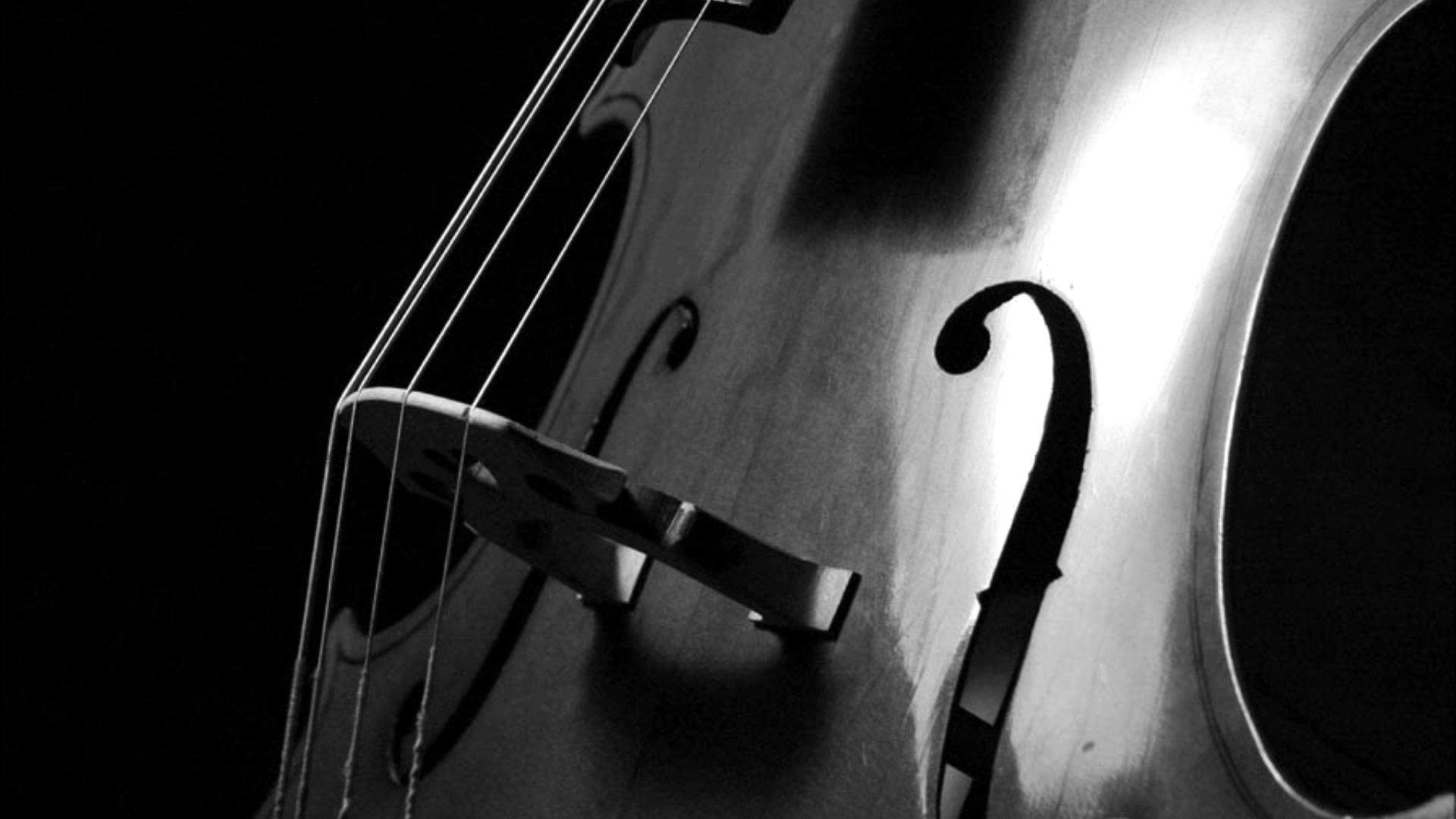 Piano And Violin Wallpaper 62 Images