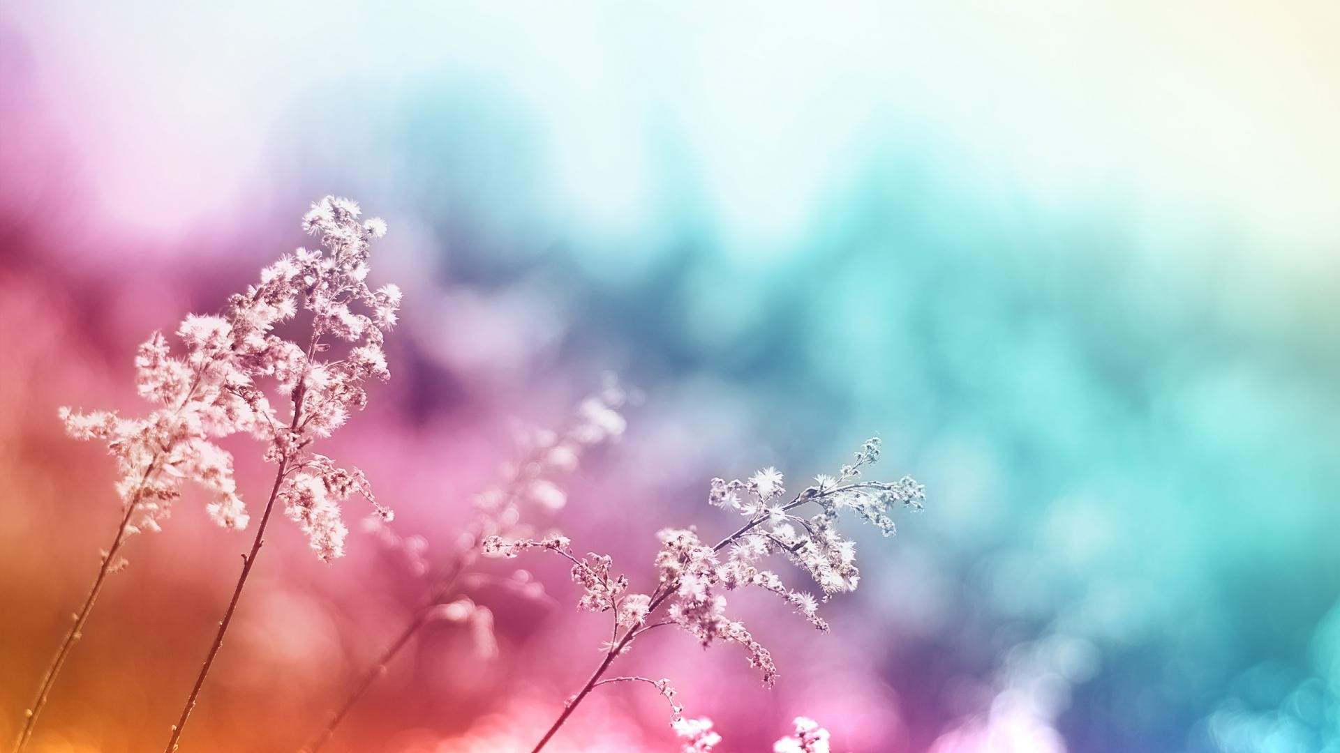 1920x1080 10. pretty-wallpaper-HD-Download3-600x338
