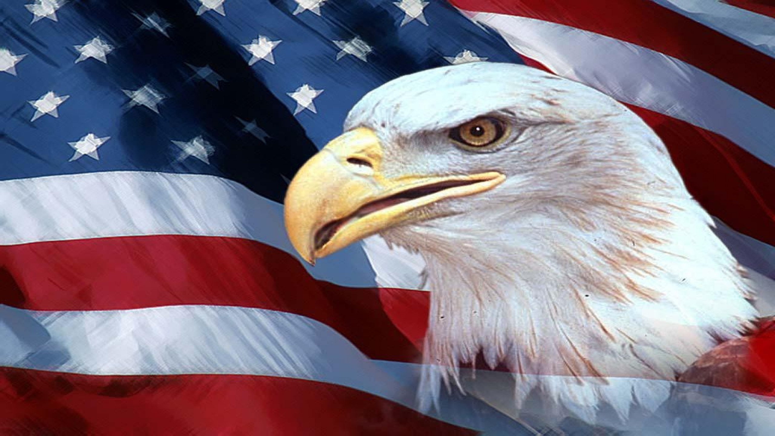 2560x1440 Full Color US Flag Eagle Scene Decal rv travel trailer camper Motorcoach USA
