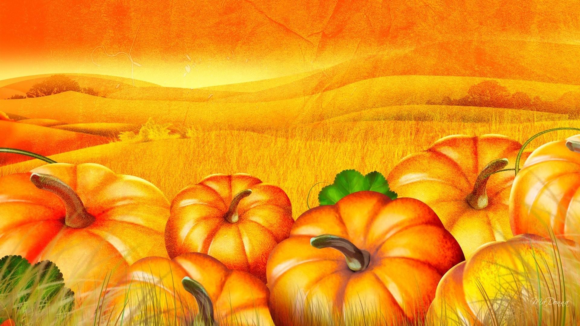 Fall Pumpkins 4K HD Desktop Wallpaper for 4K Ultra HD TV