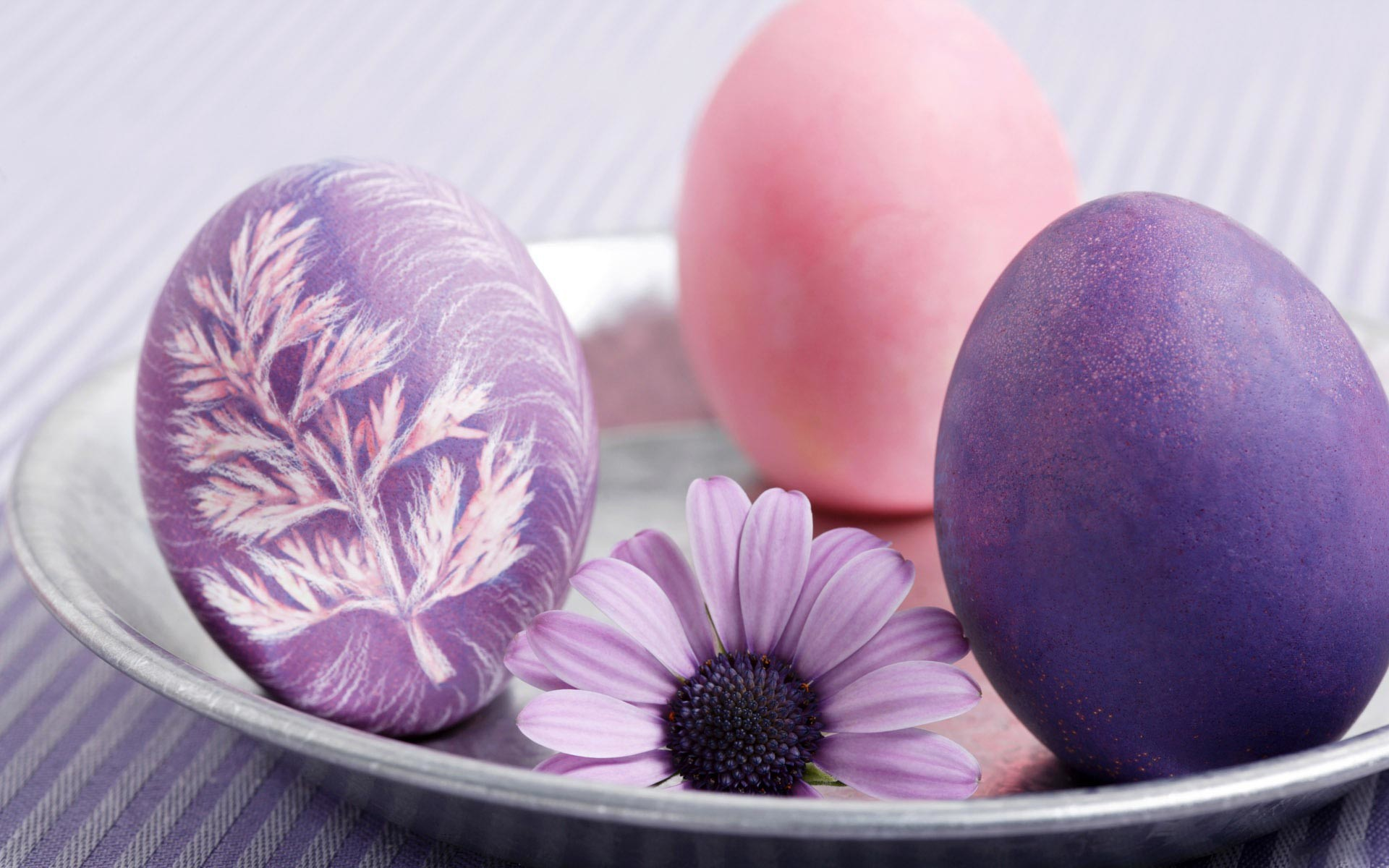 1920x1200 Pink and purple Easter eggs HD wallpapers