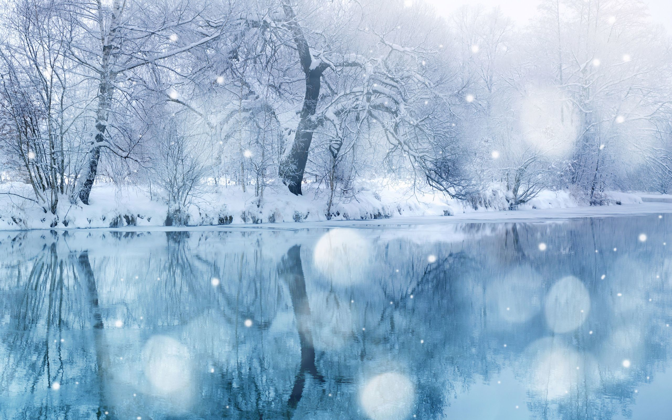 2560x1600 Winter Wonderland Backgrounds - Wallpaper Zone