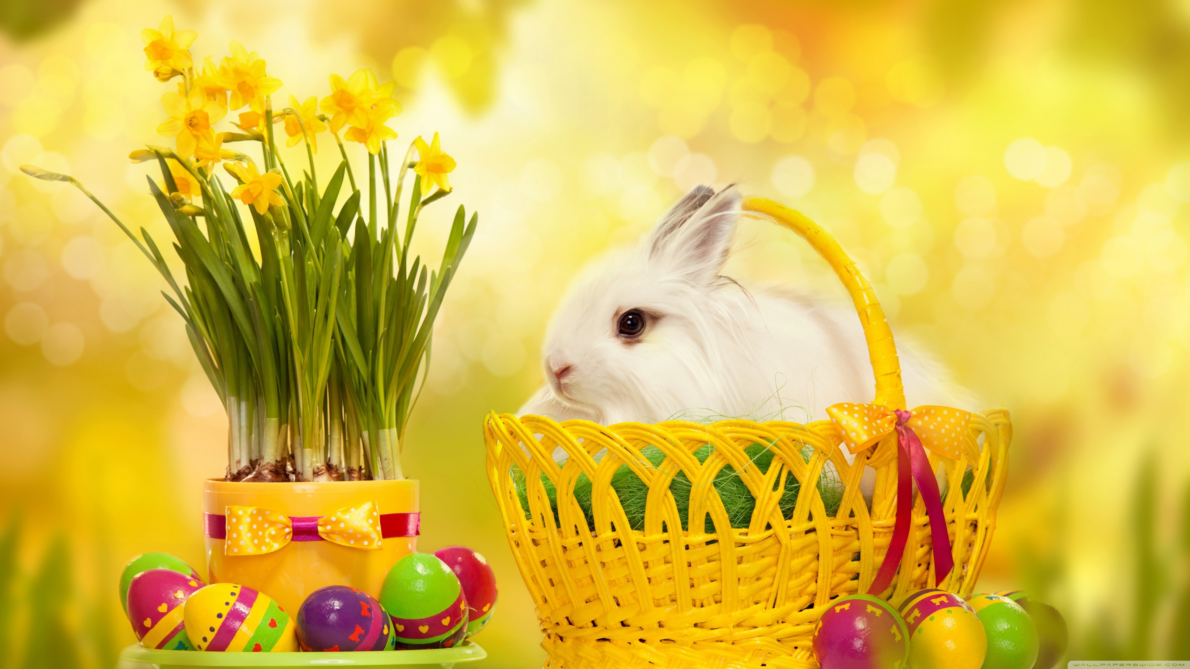 Easter wallpaper with cute animals 51 images - Easter desktop wallpaper ...