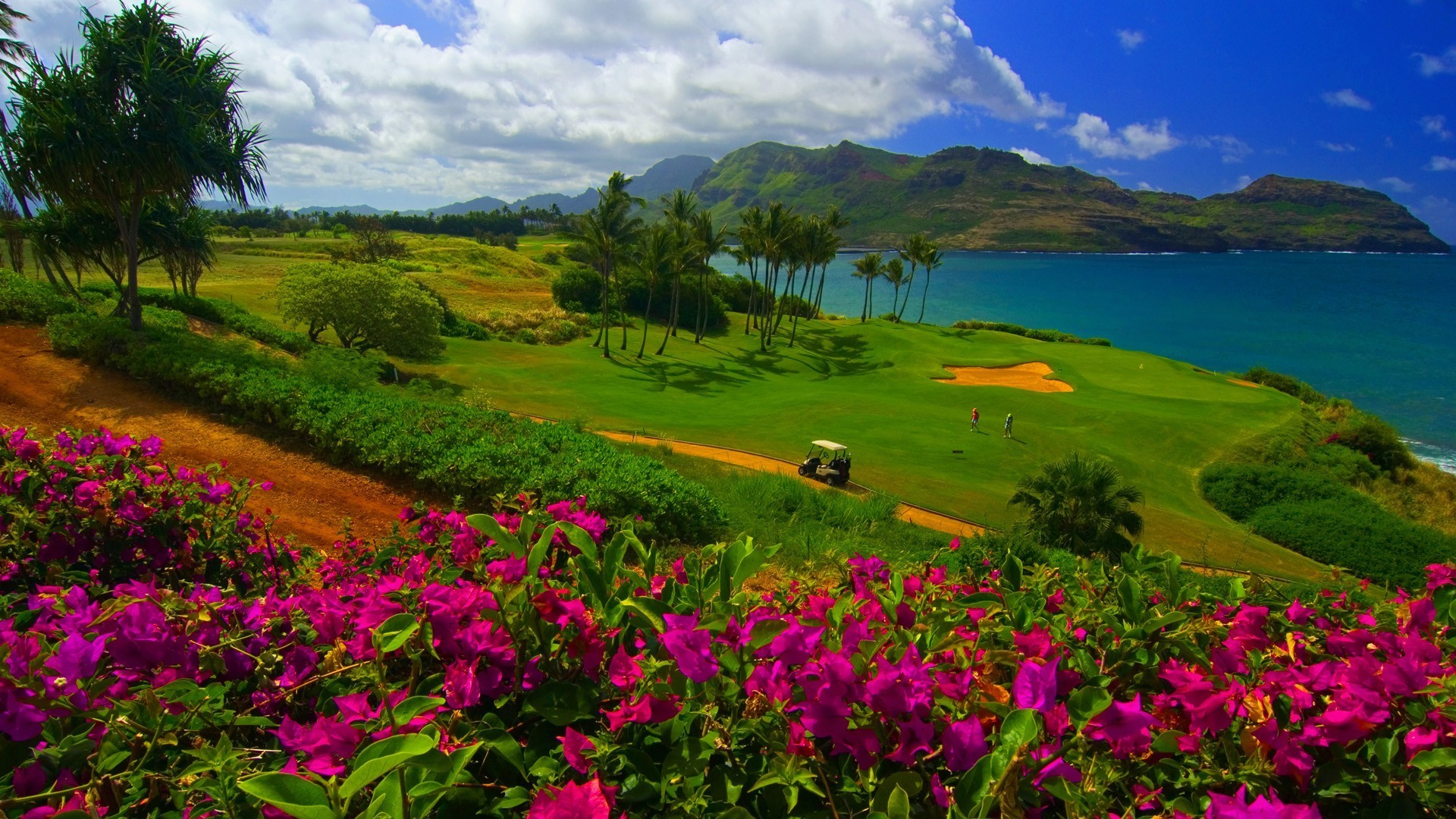 1920x1080 nature, Landscape, Water, Trees, Sea, Hawaii, Golf Course, Flowers, Grass,  Sand, Palm Trees, Mountain, Hill, Clouds Wallpapers HD / Desktop and Mobile  ...