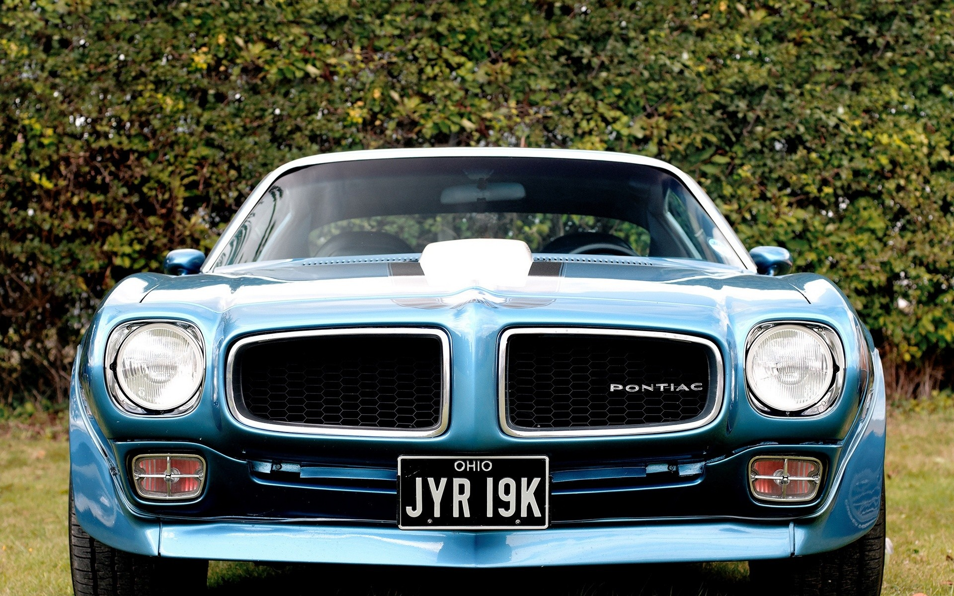 1920x1200 Pontiac Firebird Trans Am HD Wallpaper | Background Image |  |  ID:429315 - Wallpaper Abyss