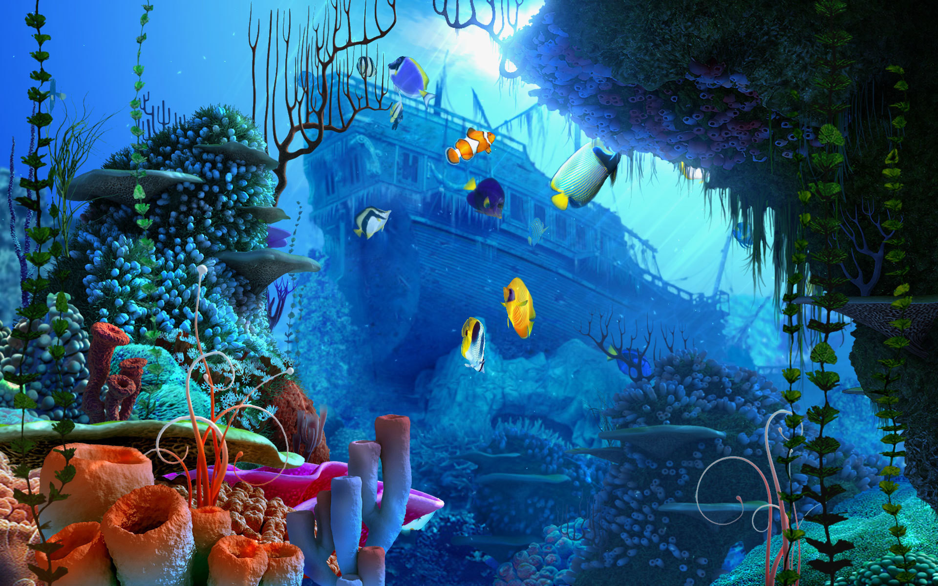 1920x1200 3d screensaver vollversion coral reef aquarium 3d screensaver version .