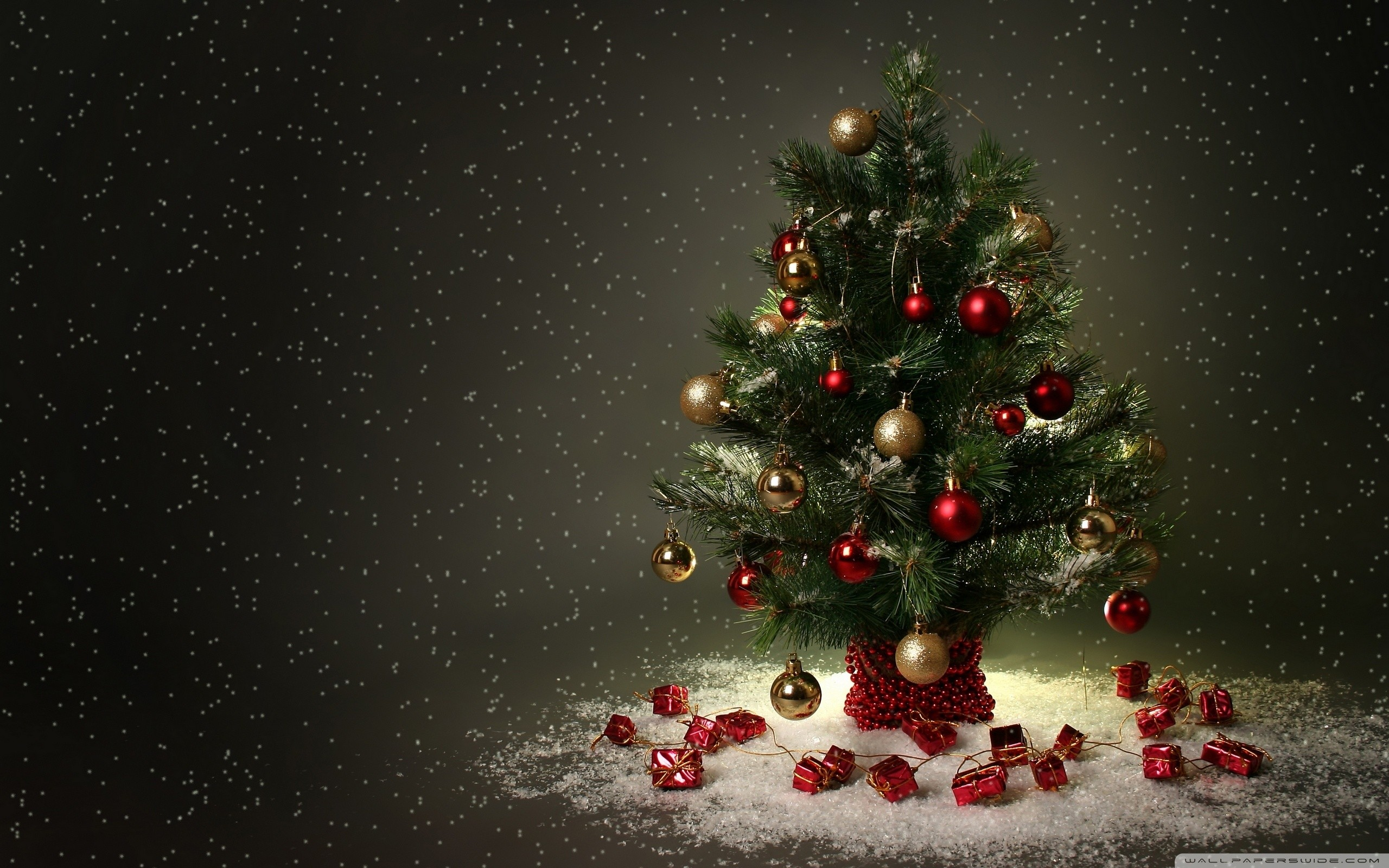 2560x1600 cute christmas tree desktop wallpaper