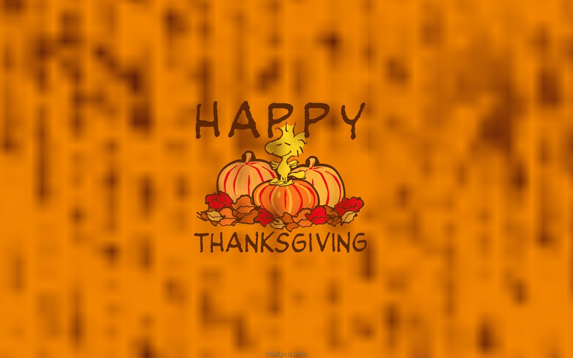 1920x1200 Celebration Thanksgiving Wallpaper 1080p ...