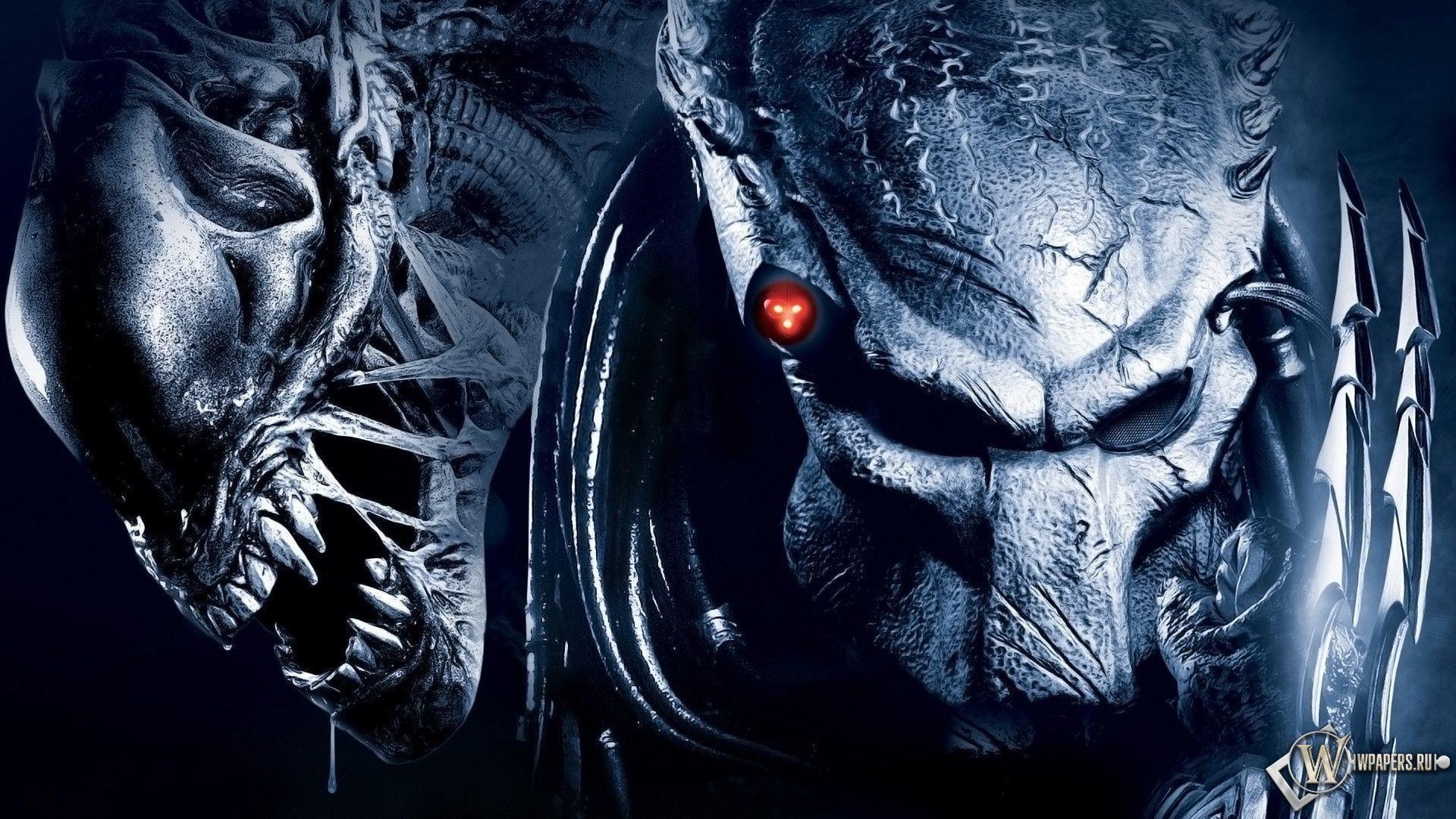 Aliens Vs Predator Wallpaper 75 Images