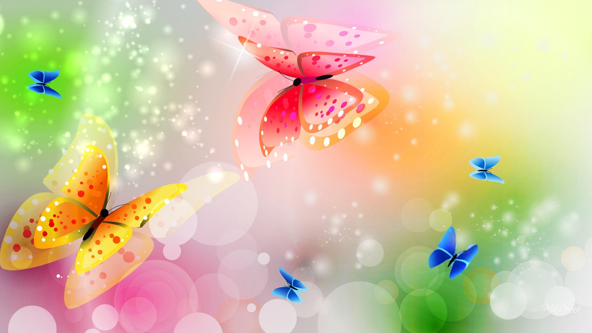 1920x1080 Butterfly HD Wallpaper