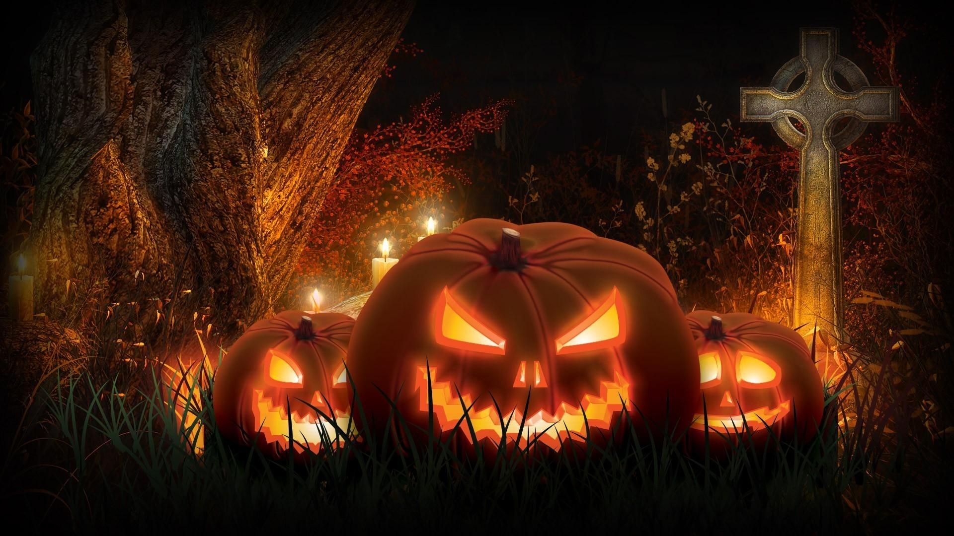 1920x1200 Scary Halloween 2012 HD Wallpapers | Pumpkins, Witches, Spider Web ... Scary Halloween 2012 HD Wallpapers Pumpkins Witches Spider Web