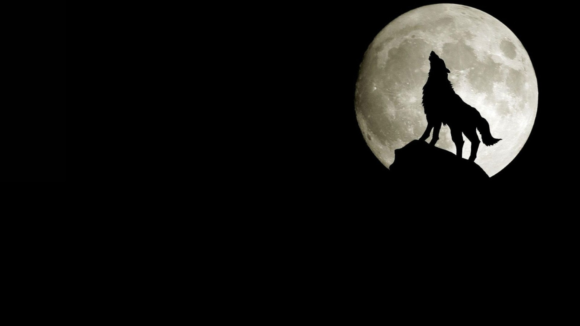 1920x1080 Howling Night Wolf
