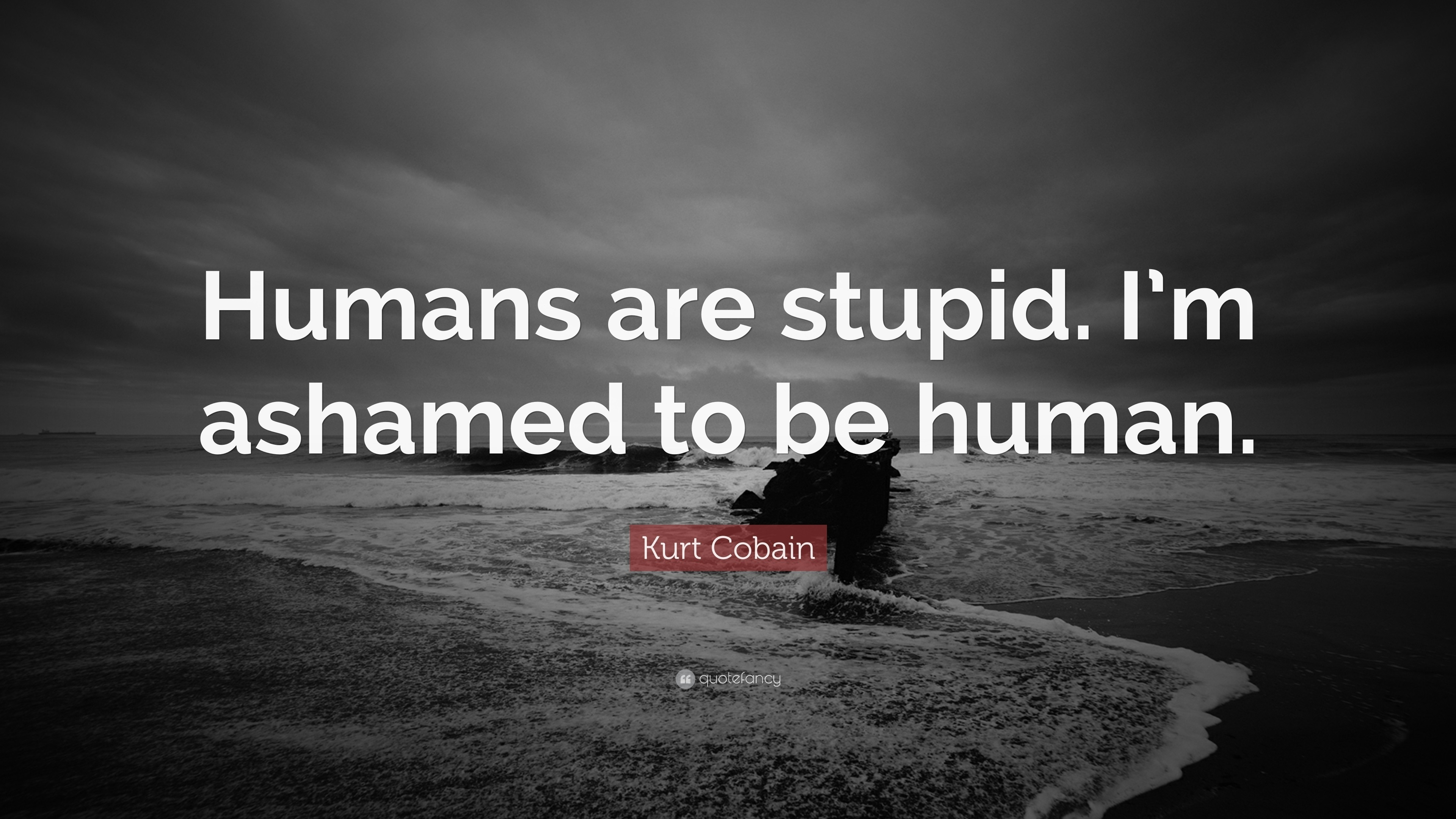 "3840x2160 Quotes On Humanity Wallpapers Kurt Cobain Quote ""Humans Are Stupid. I'm  Ashamed"