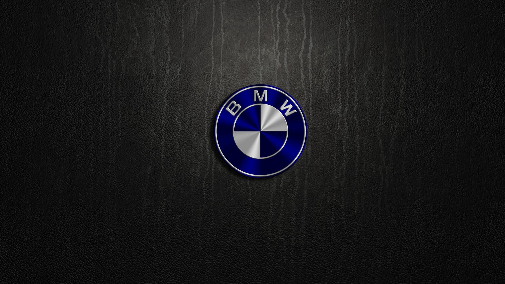 1920x1080 Bmw Logo wallpaper