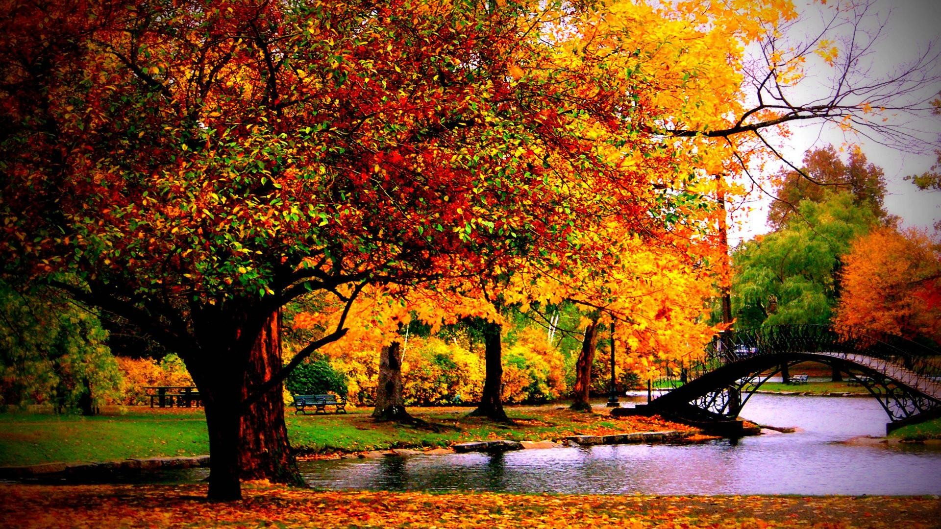 Autumn HD Wallpapers 1080p (76+ Images