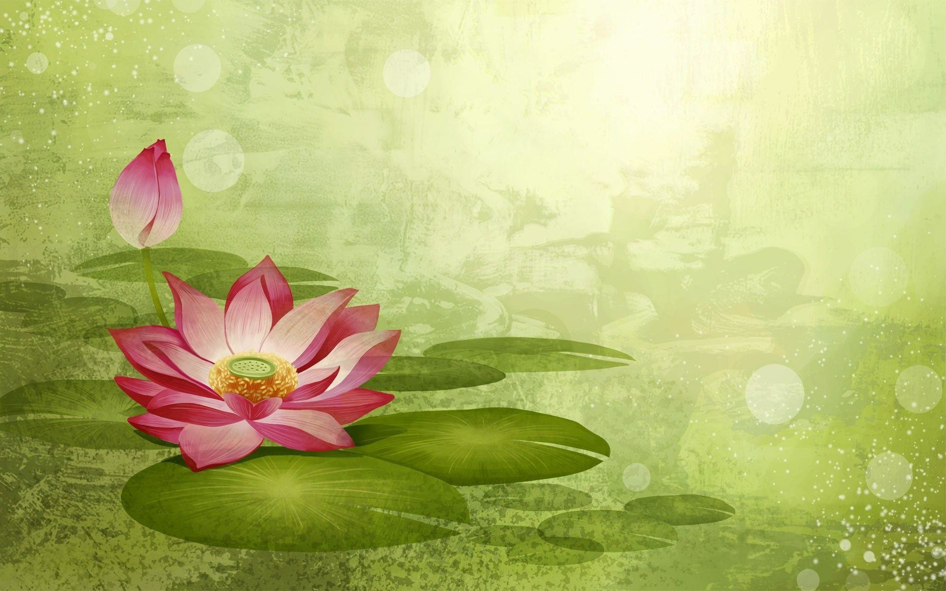 Lotus flower background 54 images 1920x1200 lotus flowers wallpaper 580796 mightylinksfo