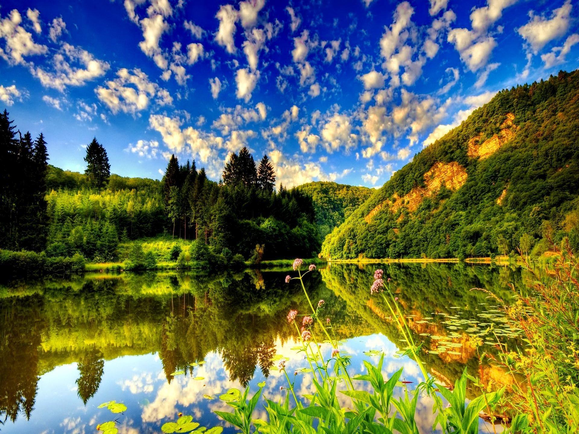 1920x1440 Summer Nature Wallpaper Desktop Background Download 1920x1080