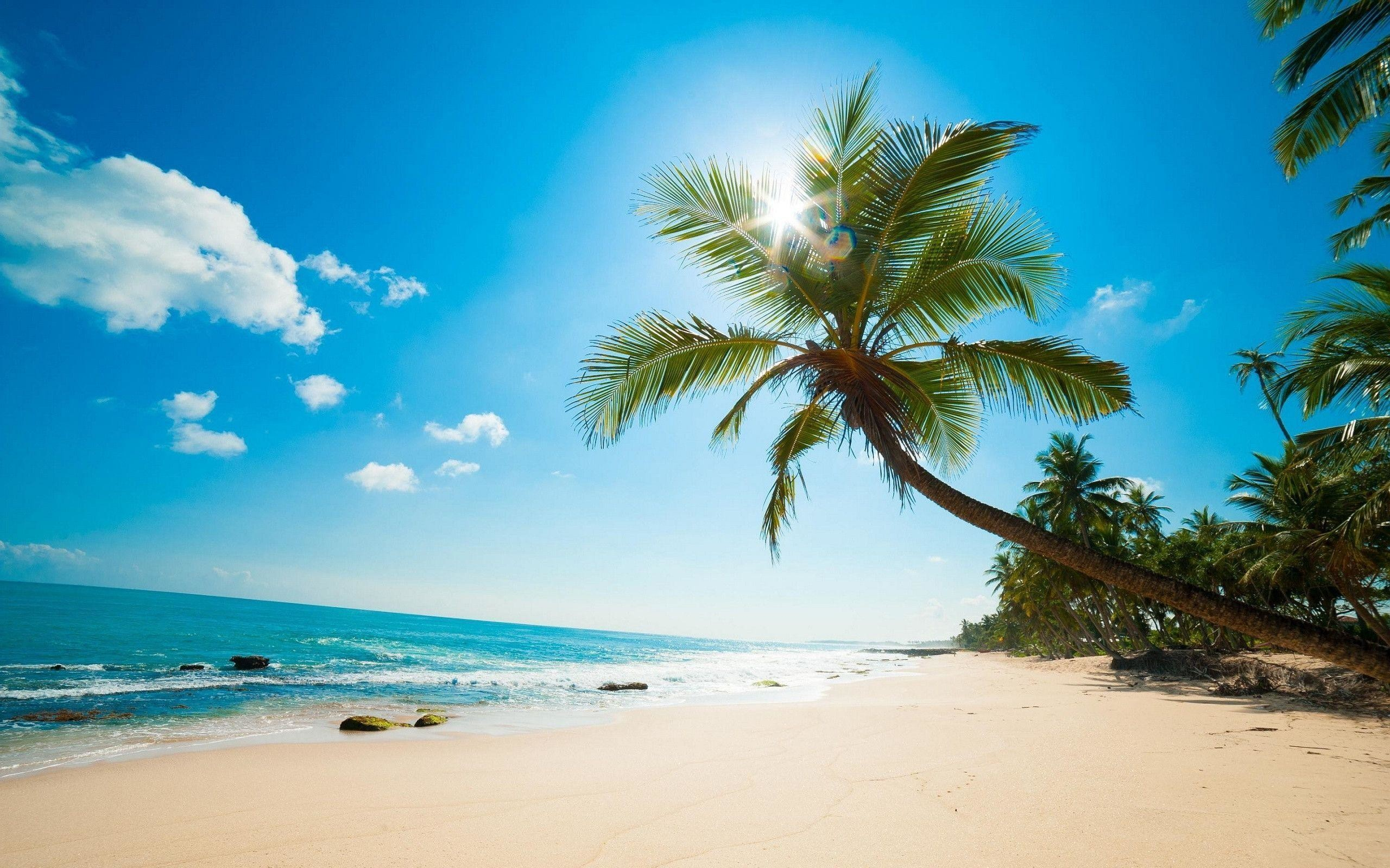 caribbean beach pictures wallpaper (70+ images)