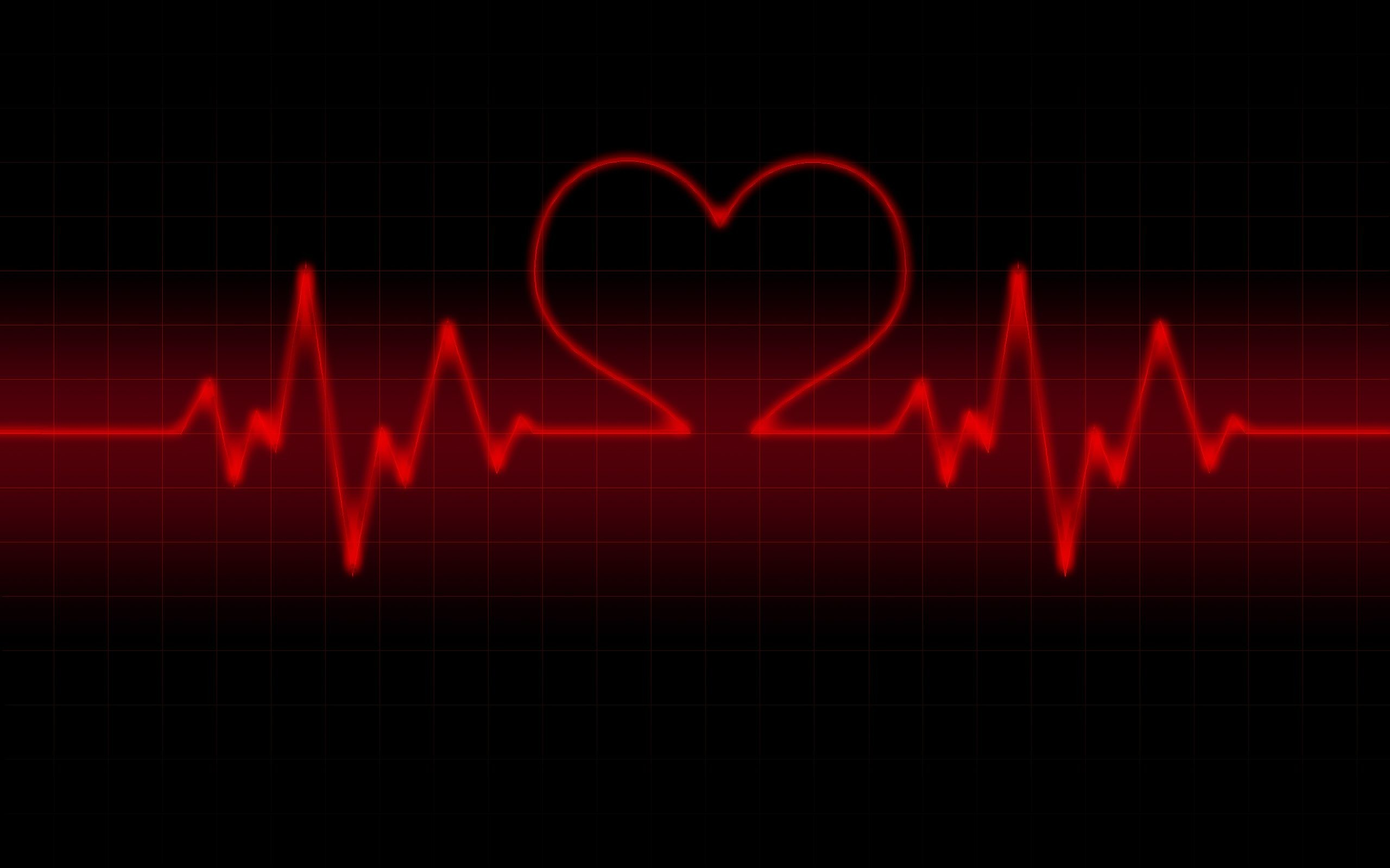 Res: 2560x1600,  life line heart rate Wallpaper Valentine Day Red And Black  Wallpapers