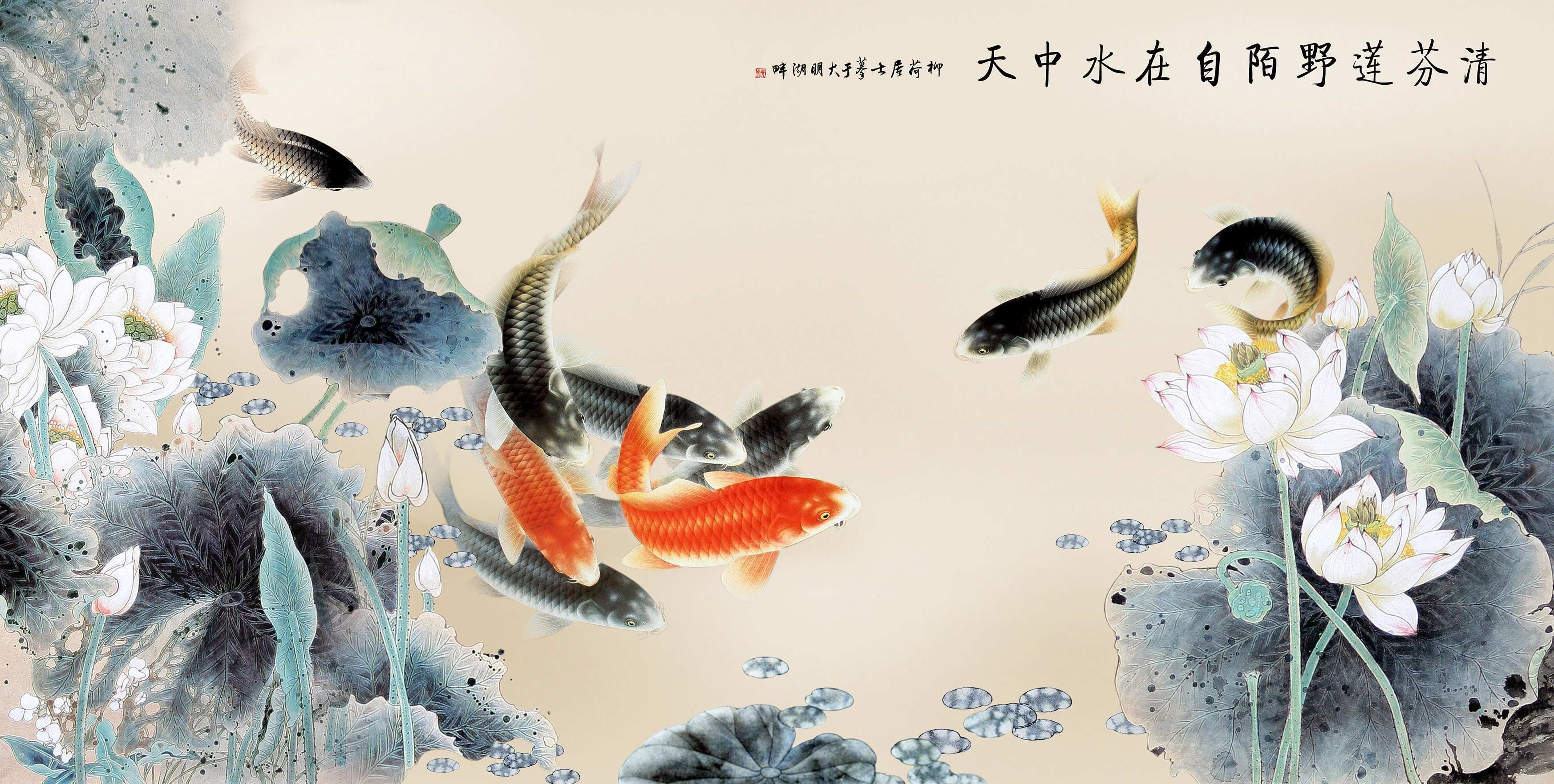 Japanese Koi Fish Wallpaper Wall Giftwatches Co