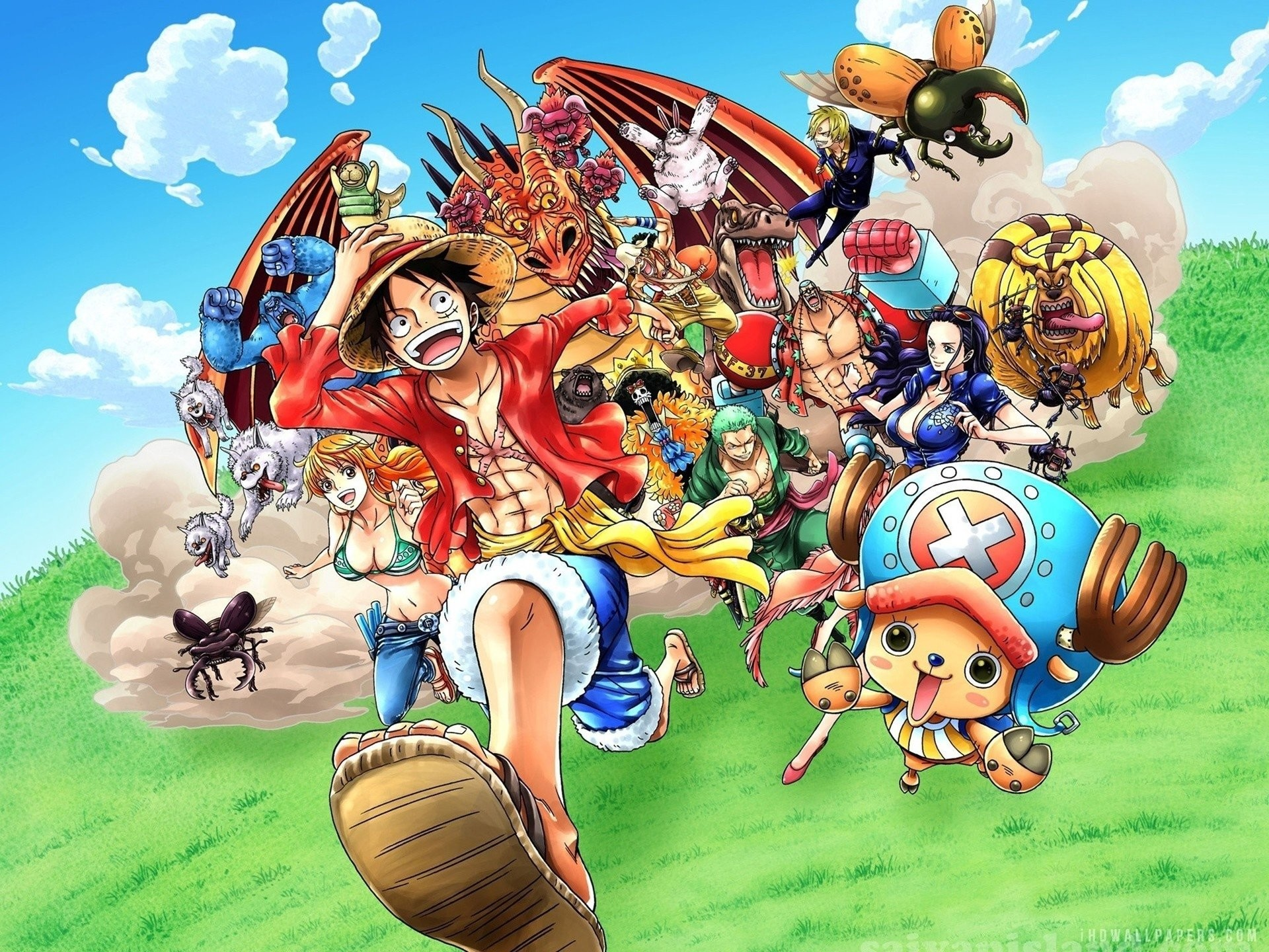 One Piece Chopper Wallpaper 80 Images