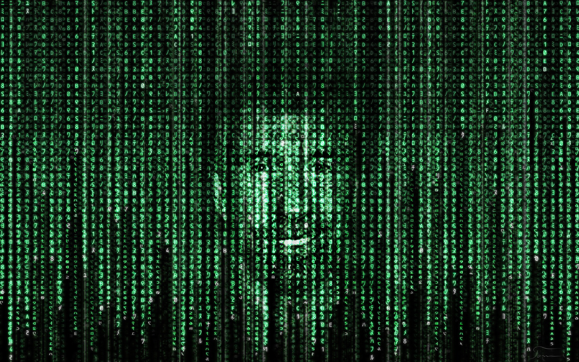 1920x1200 ... Chuck Norris in matrix code by tomhotovy