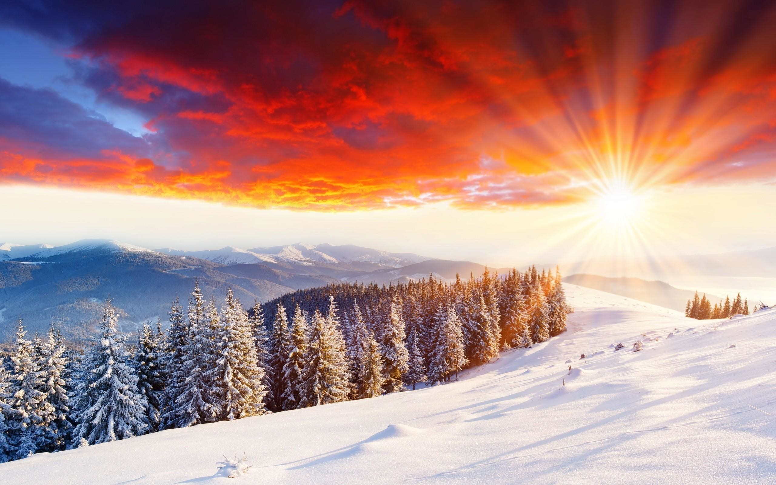 2560x1600 Beautiful snowfall wallpapers 9 ...