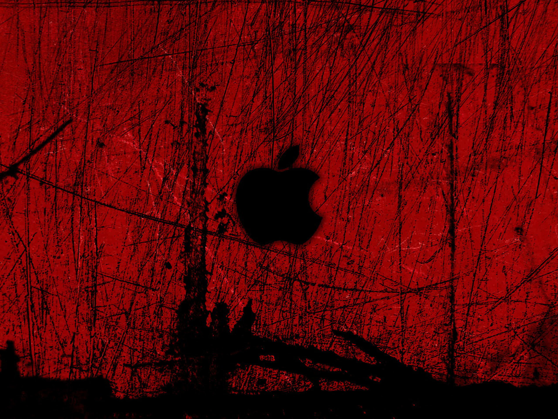 699960 red apple wallpapers 1920x1440 for iphone 5